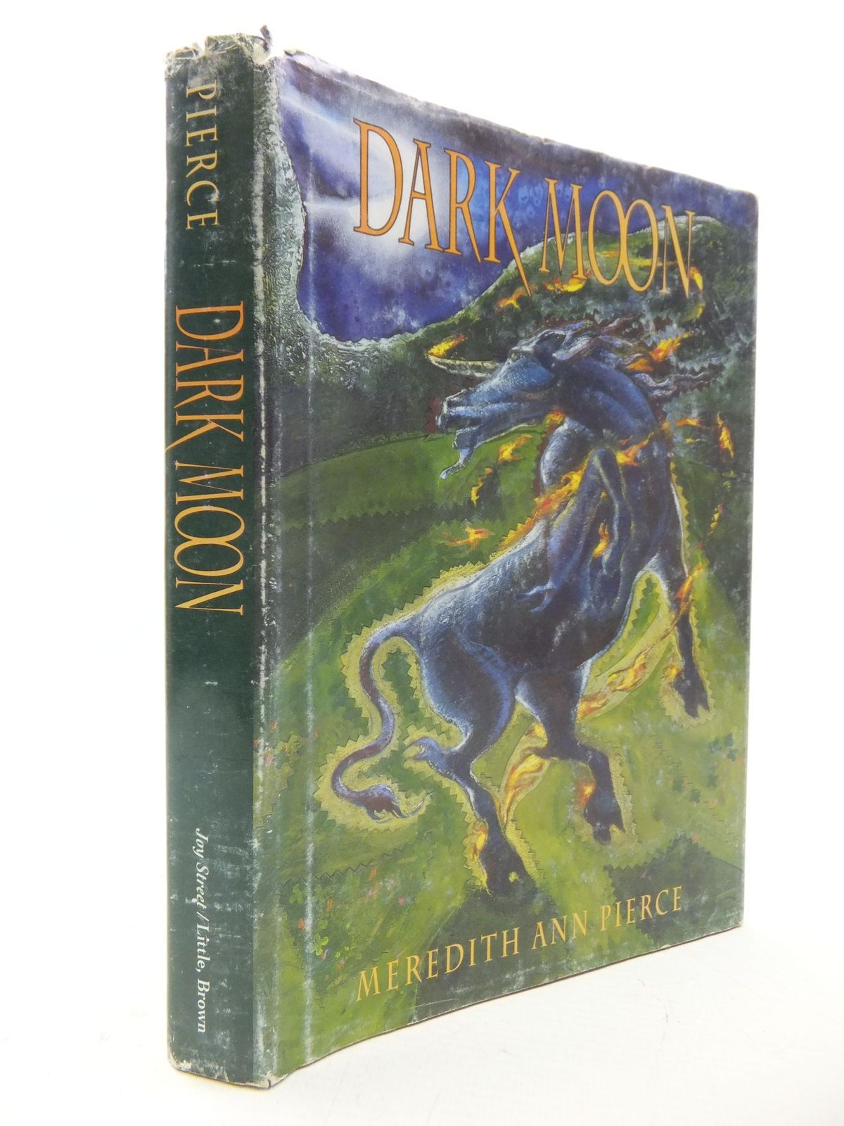 Photo of DARK MOON written by Pierce, Meredith Ann published by Little, Brown and Company (STOCK CODE: 1109404)  for sale by Stella & Rose's Books
