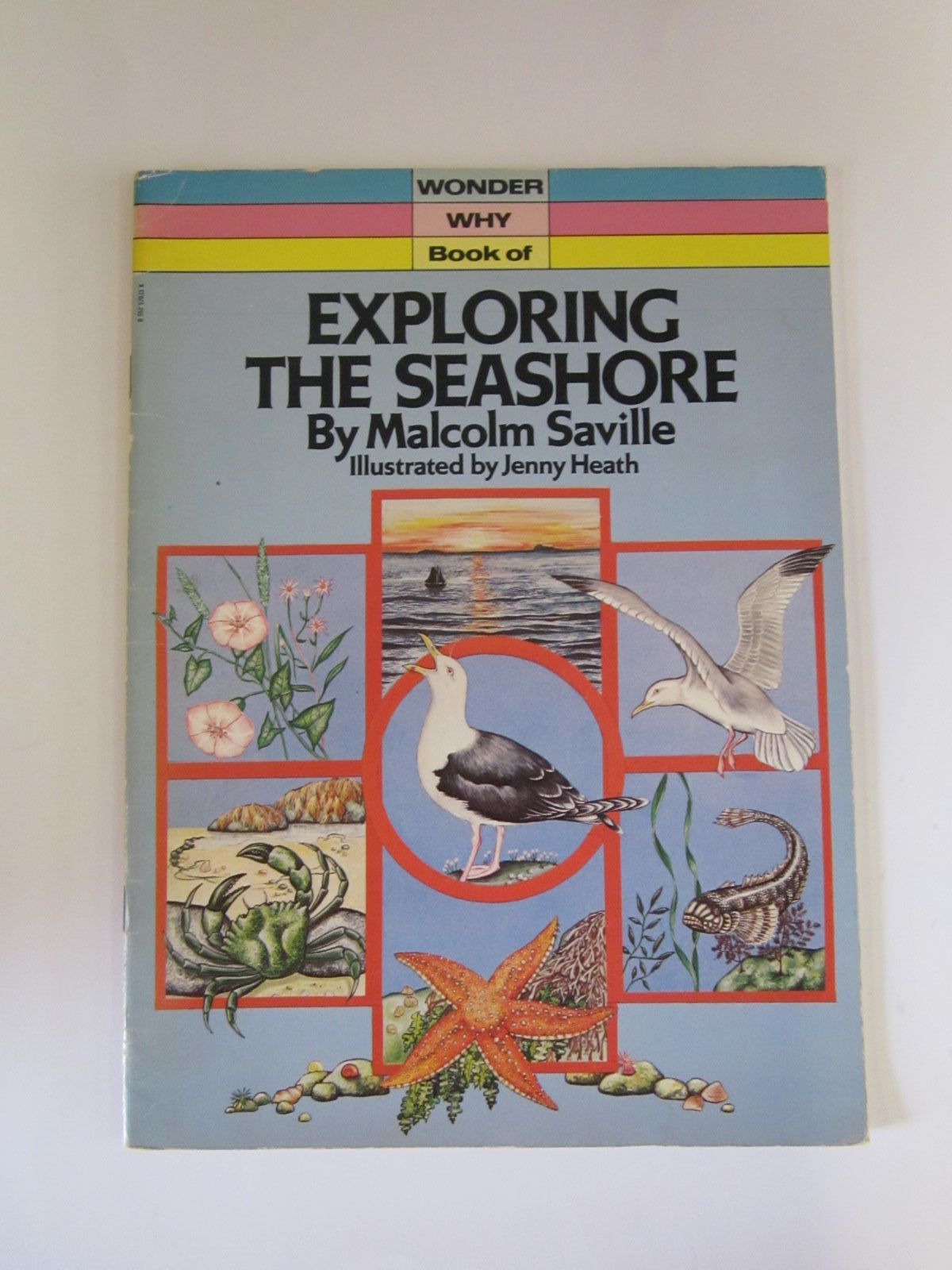 Photo of WONDER WHY BOOK OF EXPLORING THE SEASHORE