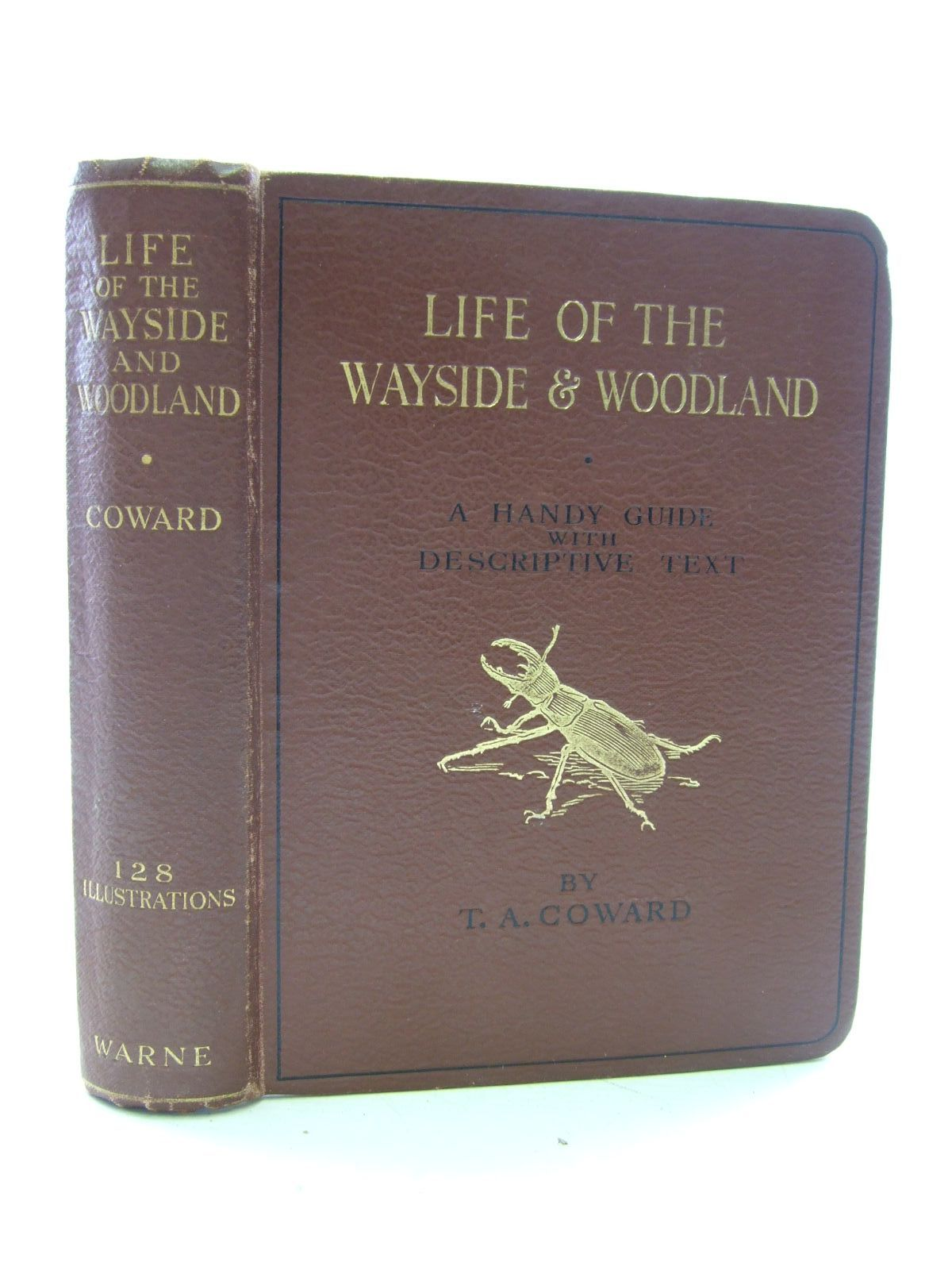 Photo of LIFE OF THE WAYSIDE & WOODLAND written by Coward, T.A. published by Frederick Warne & Co Ltd. (STOCK CODE: 1206828)  for sale by Stella & Rose's Books