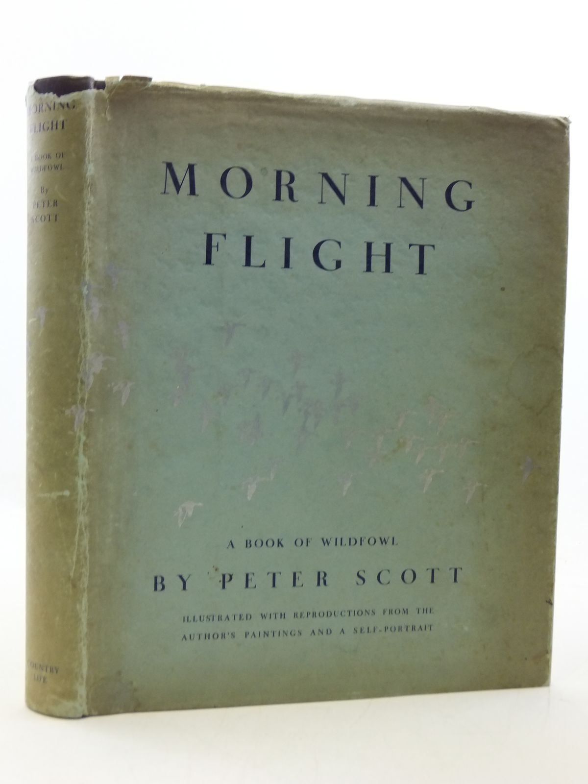 Photo of MORNING FLIGHT A BOOK OF WILDFOWL written by Scott, Peter illustrated by Scott, Peter published by Country Life Limited (STOCK CODE: 1207782)  for sale by Stella & Rose's Books