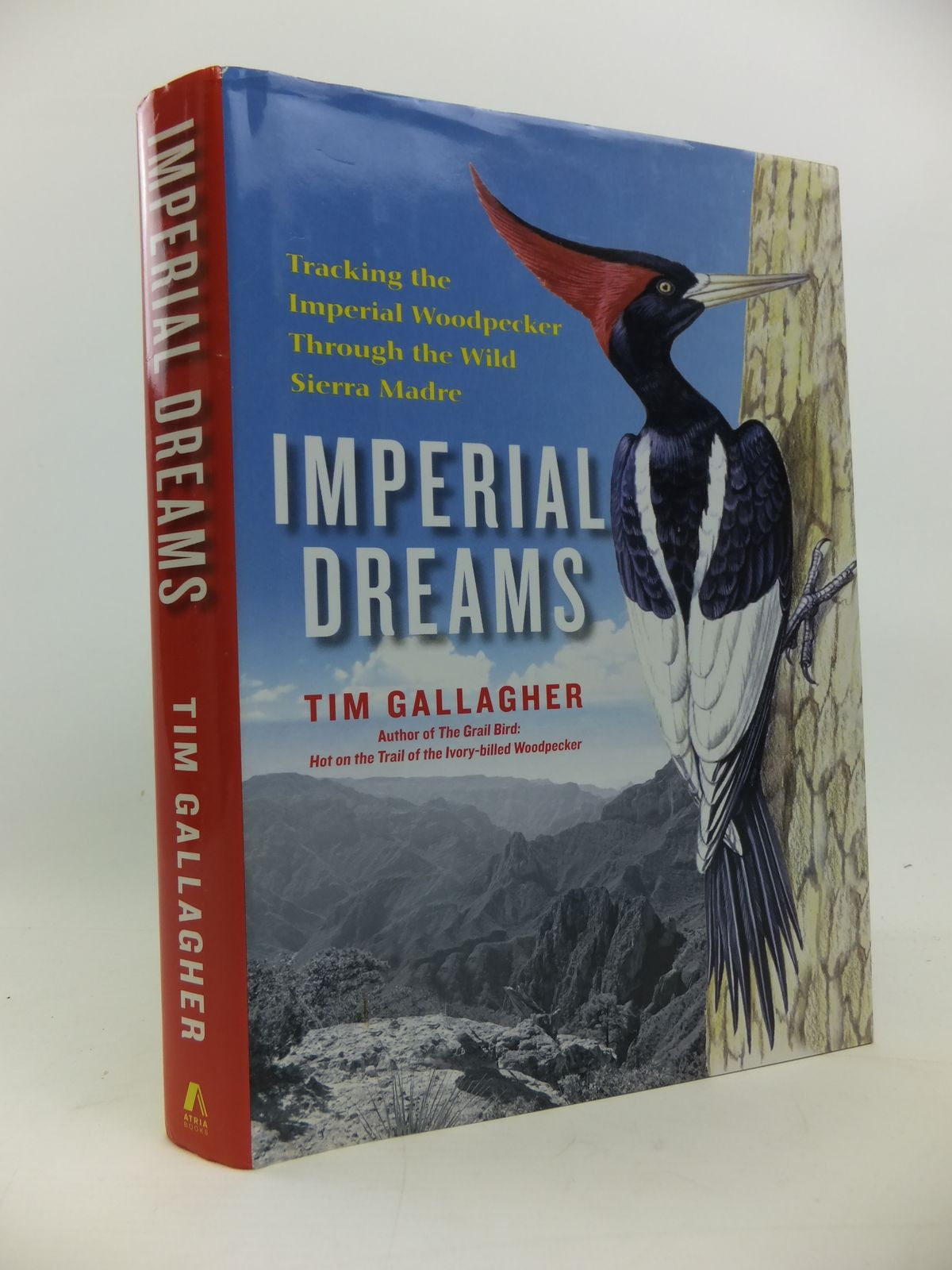 Photo of IMPERIAL DREAMS