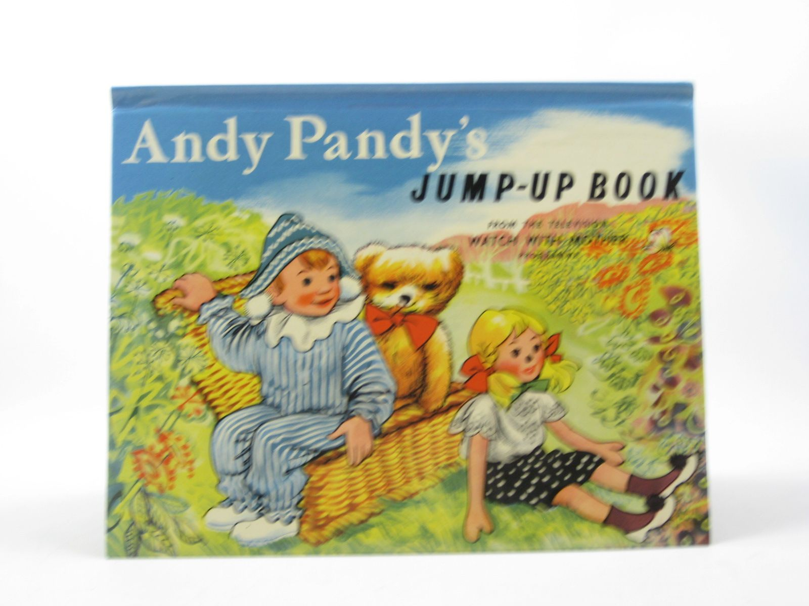 Photo of ANDY PANDY'S JUMP-UP BOOK written by Bird, Maria illustrated by Wright, Matvyn published by Purnell (STOCK CODE: 1312758)  for sale by Stella & Rose's Books