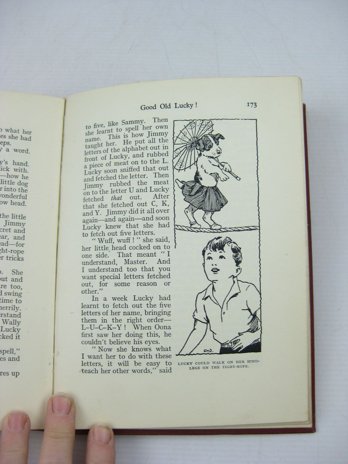 Photo of MR. GALLIANO'S CIRCUS written by Blyton, Enid illustrated by Davie, E.H. published by George Newnes Ltd. (STOCK CODE: 1313996)  for sale by Stella & Rose's Books
