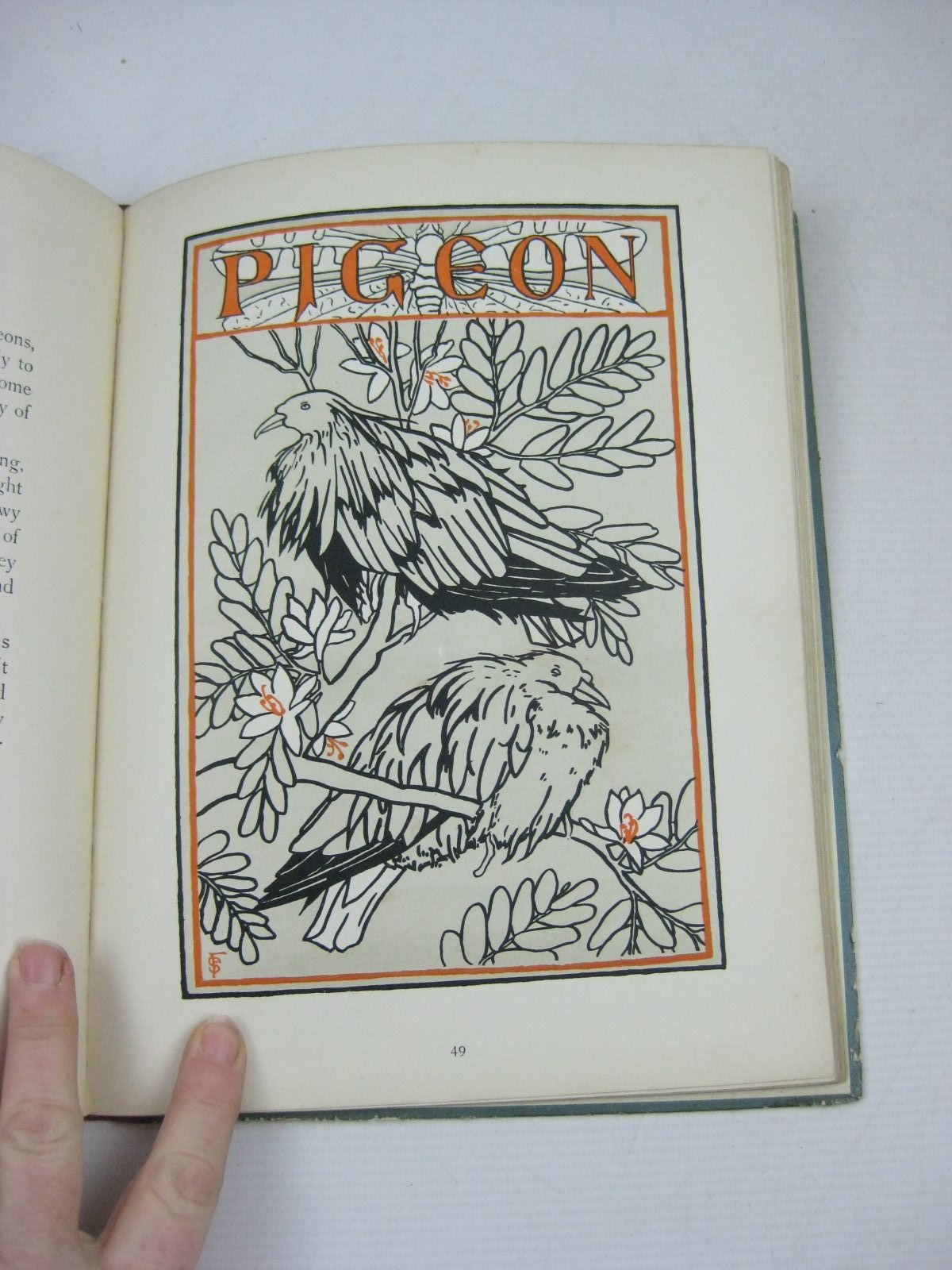 Photo of BIRD PICTURES written by Whitby, Alice illustrated by Fallon, Sara W.M. published by George Allen (STOCK CODE: 1314844)  for sale by Stella & Rose's Books