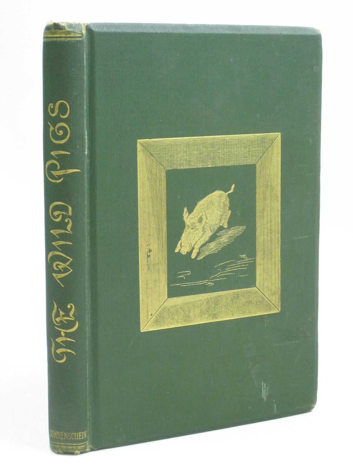 Photo of THE WILD PIGS written by Young, Gerald illustrated by Parkinson, W. published by Swan Sonnenschein & Co. Ltd. (STOCK CODE: 1315822)  for sale by Stella & Rose's Books
