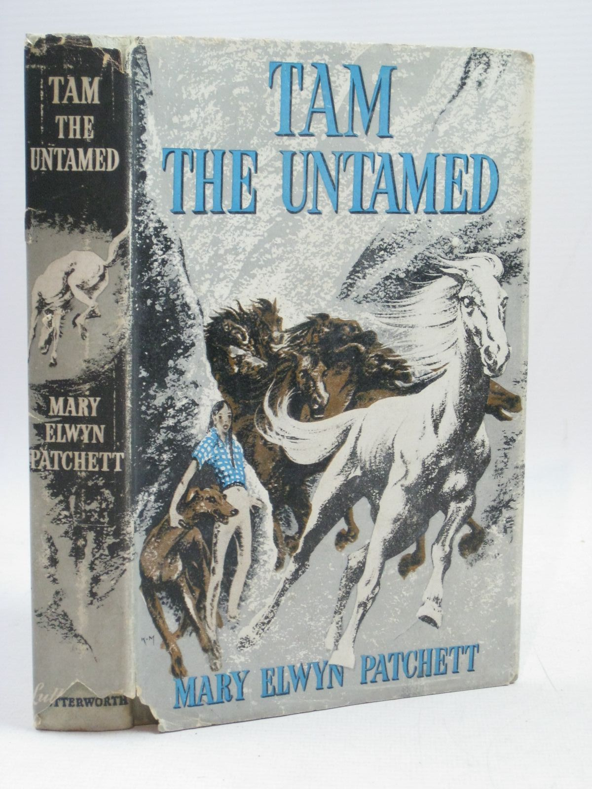 Photo of TAM THE UNTAMED written by Patchett, Mary Elwyn illustrated by Kiddell-Monroe, Joan published by Lutterworth Press (STOCK CODE: 1315921)  for sale by Stella & Rose's Books