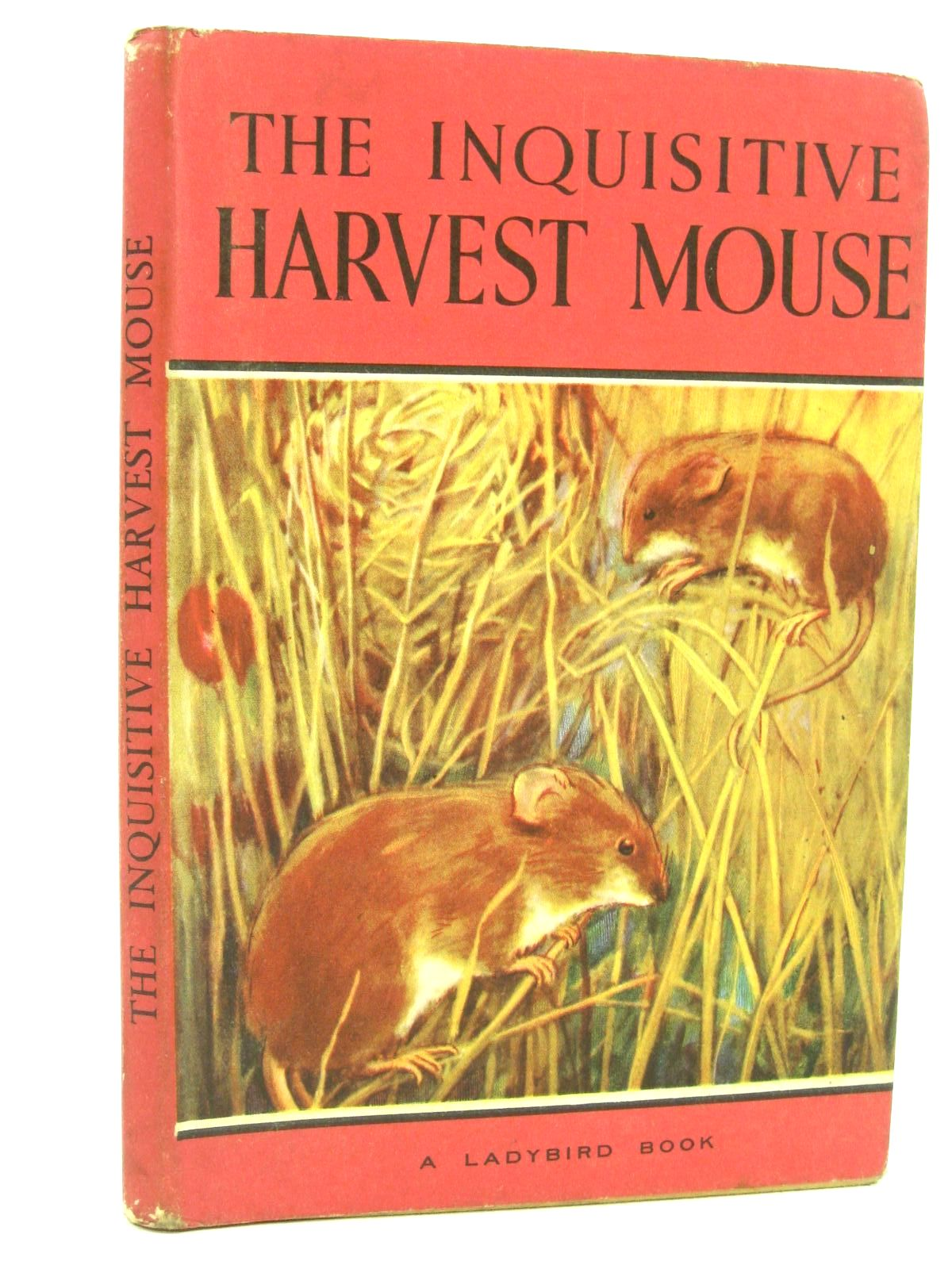 Photo of THE INQUISITIVE HARVEST MOUSE written by Barr, Noel illustrated by Hickling, P.B. published by Wills & Hepworth Ltd. (STOCK CODE: 1316799)  for sale by Stella & Rose's Books