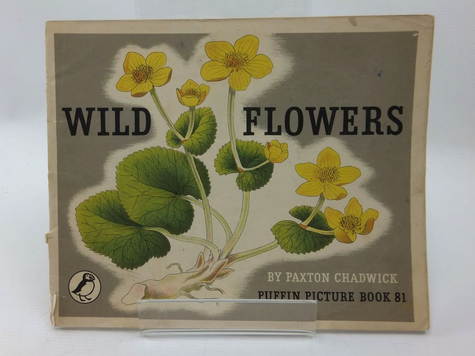 Photo of WILD FLOWERS written by Chadwick, Paxton illustrated by Chadwick, Paxton published by Penguin (STOCK CODE: 1316886)  for sale by Stella & Rose's Books
