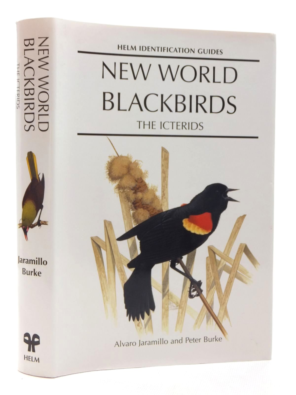 Photo of NEW WORLD BLACKBIRDS THE ICTERIDS (HELM IDENTIFICATION GUIDES)
