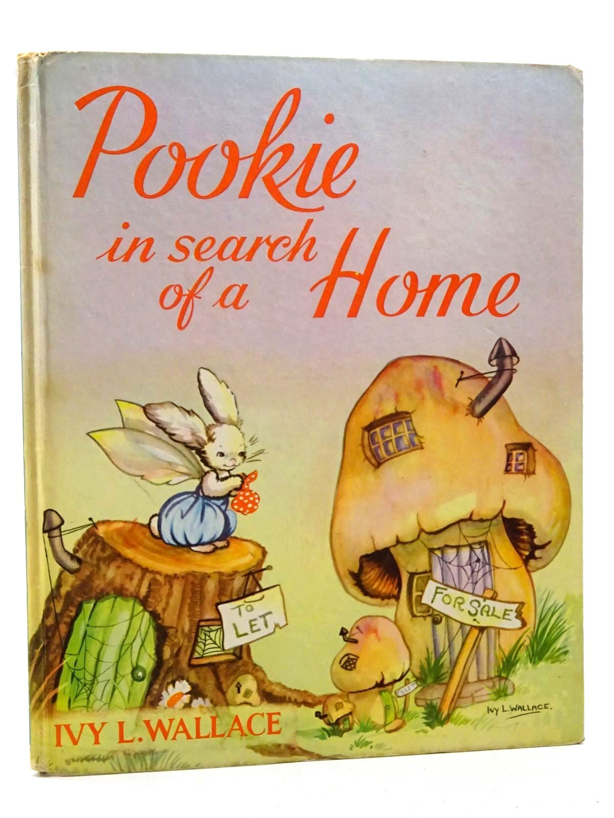 Photo of POOKIE IN SEARCH OF A HOME