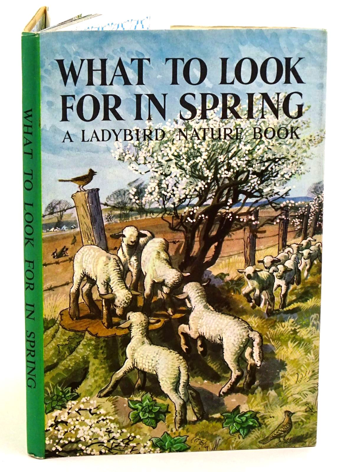 Photo of WHAT TO LOOK FOR IN SPRING written by Watson, E.L. Grant illustrated by Tunnicliffe, C.F. published by Wills & Hepworth Ltd. (STOCK CODE: 1318155)  for sale by Stella & Rose's Books