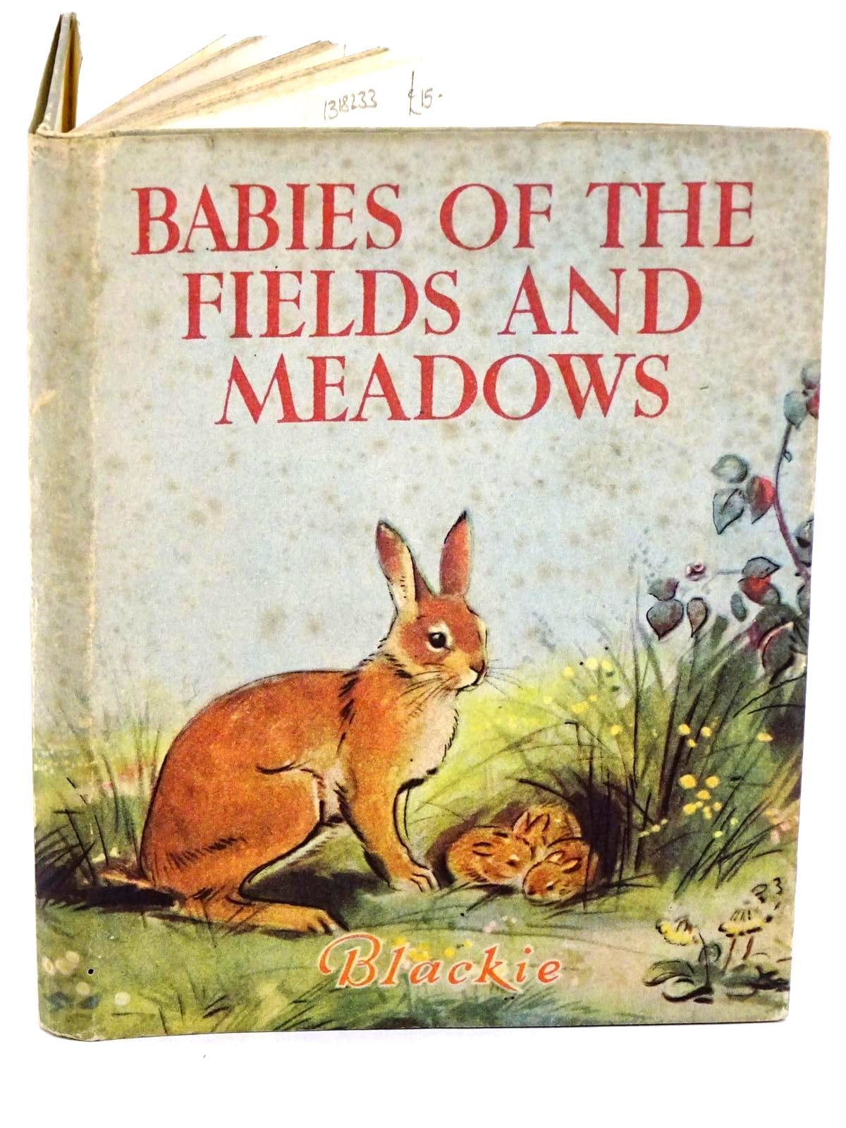Photo of BABIES OF THE FIELDS AND MEADOWS written by Tyrrell, Marla illustrated by Soper, Eileen published by Blackie & Son Ltd. (STOCK CODE: 1318233)  for sale by Stella & Rose's Books