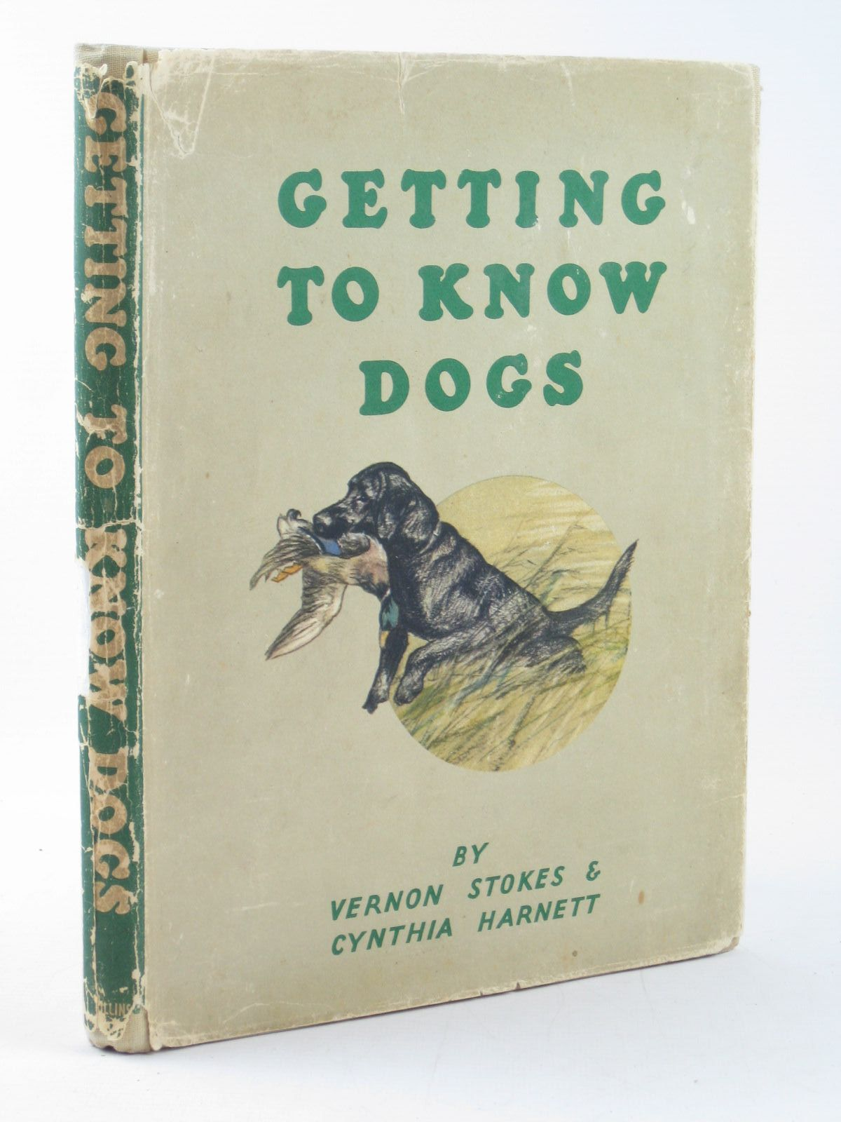 Photo of GETTING TO KNOW DOGS written by Harnett, Cynthia illustrated by Stokes, Vernon published by Collins (STOCK CODE: 1402327)  for sale by Stella & Rose's Books