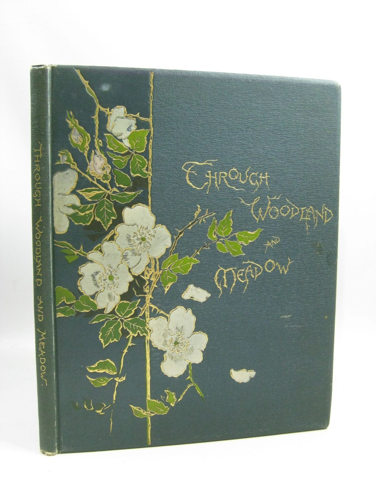 Photo of THROUGH WOODLAND AND MEADOW & OTHER POEMS written by Wood, Helen J.<br />Nesbit, E.<br />Bingham, Clifton illustrated by Low, Marie<br />West, Maud published by Ernest Nister, E.P. Dutton & Co. (STOCK CODE: 1404905)  for sale by Stella & Rose's Books