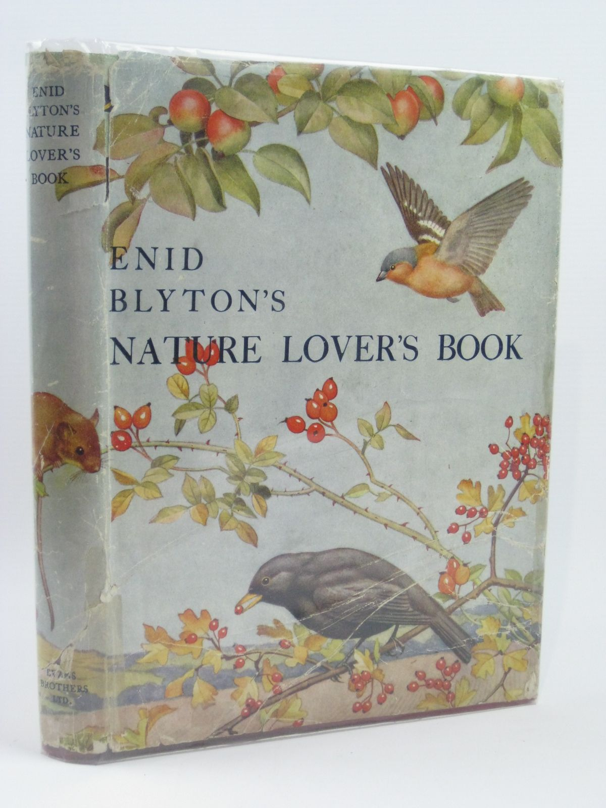 Photo of ENID BLYTON'S NATURE LOVER'S BOOK written by Blyton, Enid illustrated by Nachshen, Donia<br />Hopking, Noel published by Evans Brothers Limited (STOCK CODE: 1406054)  for sale by Stella & Rose's Books