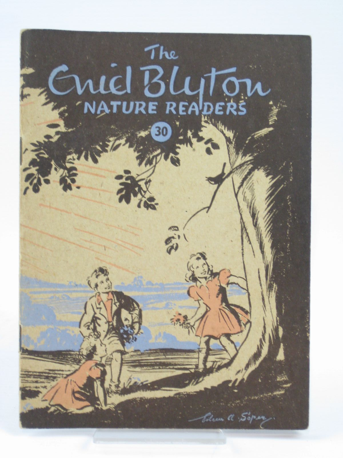 Photo of THE ENID BLYTON NATURE READERS NO. 30 written by Blyton, Enid illustrated by Soper, Eileen published by Macmillan & Co. Ltd. (STOCK CODE: 1406281)  for sale by Stella & Rose's Books