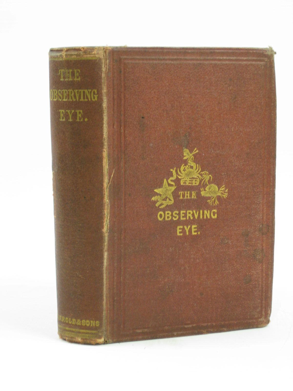 Photo of THE OBSERVING EYE published by Jarrold & Sons (STOCK CODE: 1406375)  for sale by Stella & Rose's Books