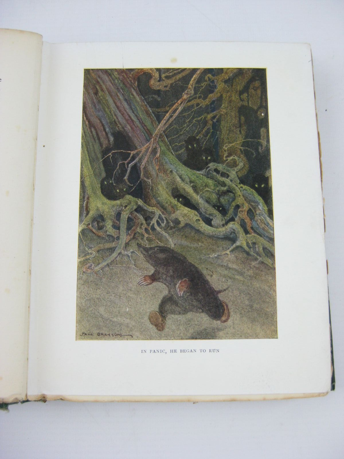 Photo of THE WIND IN THE WILLOWS written by Grahame, Kenneth illustrated by Bransom, Paul published by Methuen & Co. Ltd. (STOCK CODE: 1406468)  for sale by Stella & Rose's Books