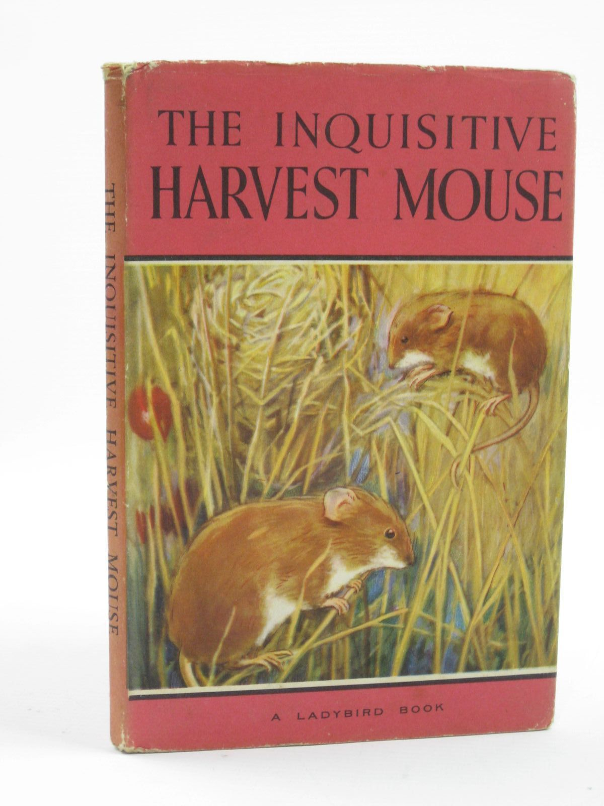 Photo of THE INQUISITIVE HARVEST MOUSE written by Barr, Noel illustrated by Hickling, P.B. published by Wills & Hepworth Ltd. (STOCK CODE: 1406587)  for sale by Stella & Rose's Books