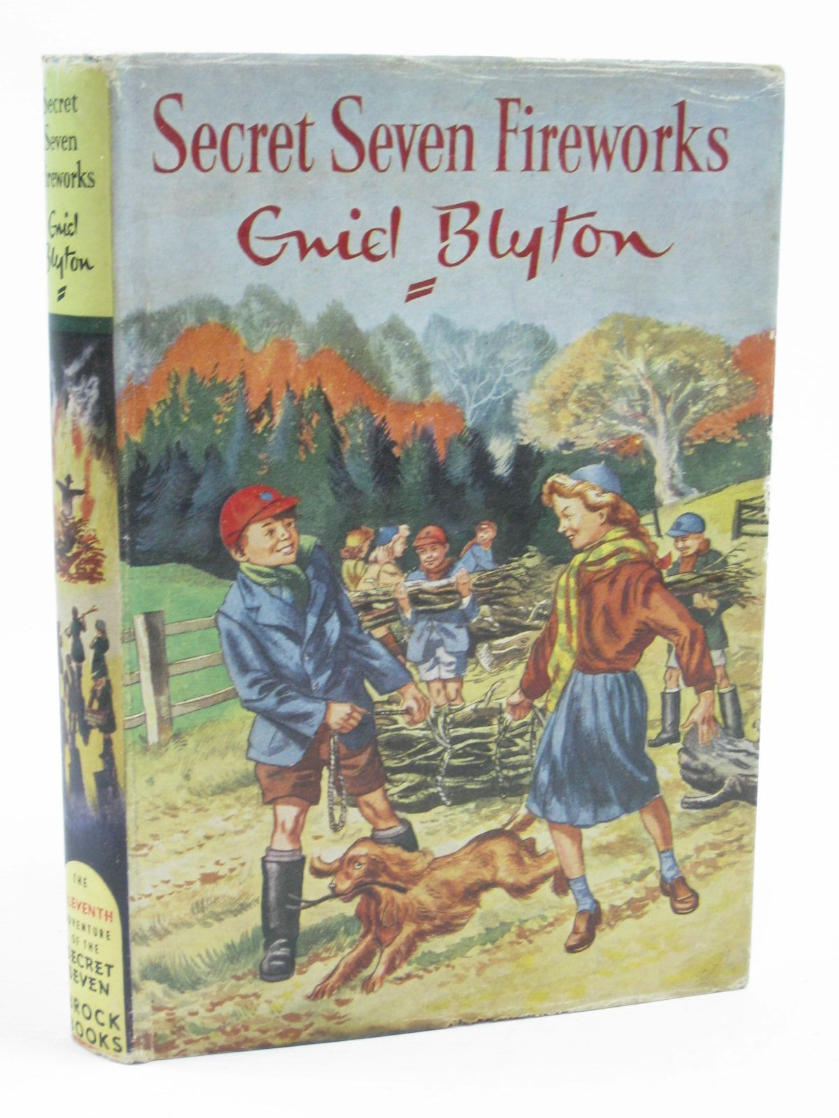 Photo of SECRET SEVEN FIREWORKS written by Blyton, Enid illustrated by Sharrocks, Burgess published by Brockhampton Press (STOCK CODE: 1406957)  for sale by Stella & Rose's Books