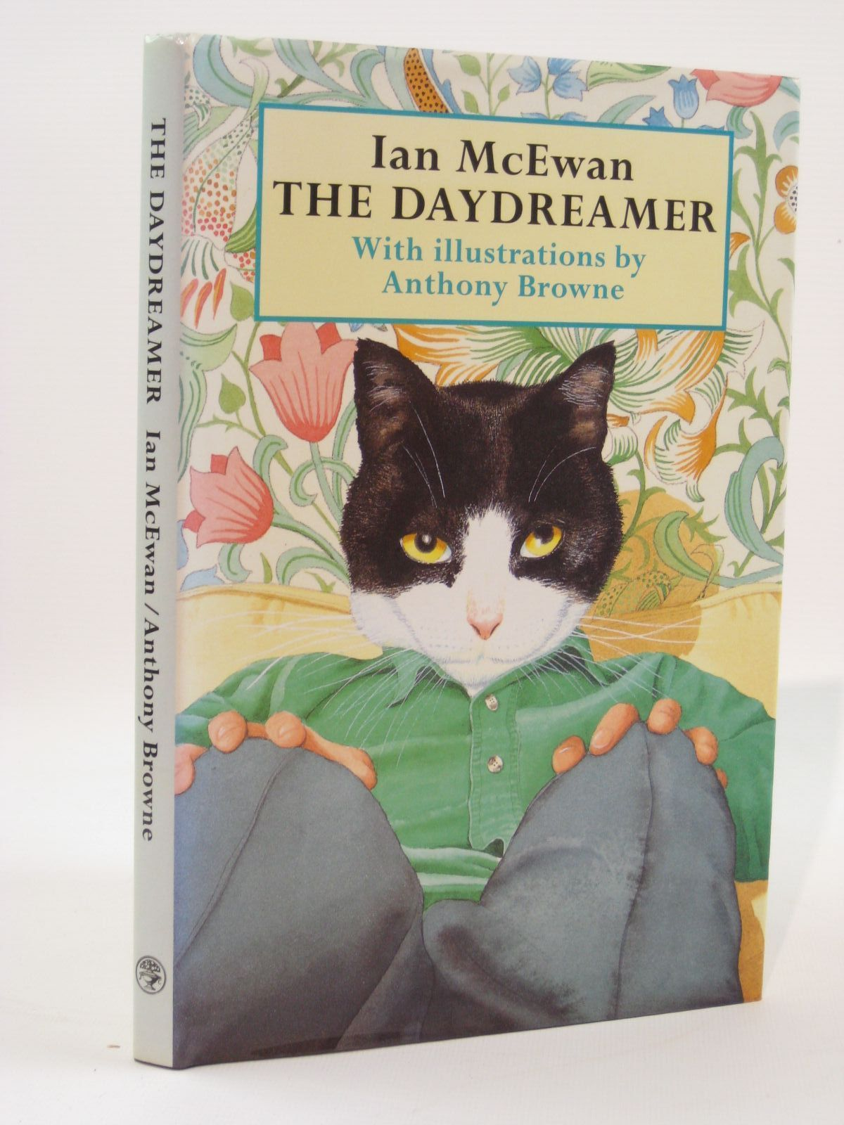 Photo of THE DAYDREAMER written by McEwan, Ian illustrated by Browne, Anthony published by Jonathan Cape (STOCK CODE: 1407142)  for sale by Stella & Rose's Books