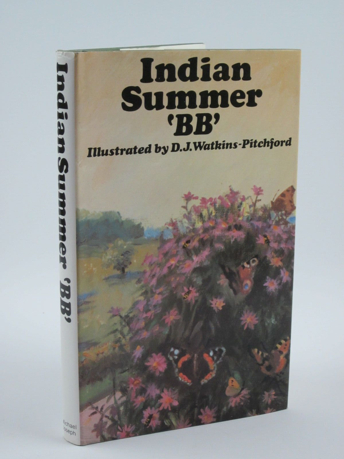 Photo of INDIAN SUMMER- Stock Number: 1501276