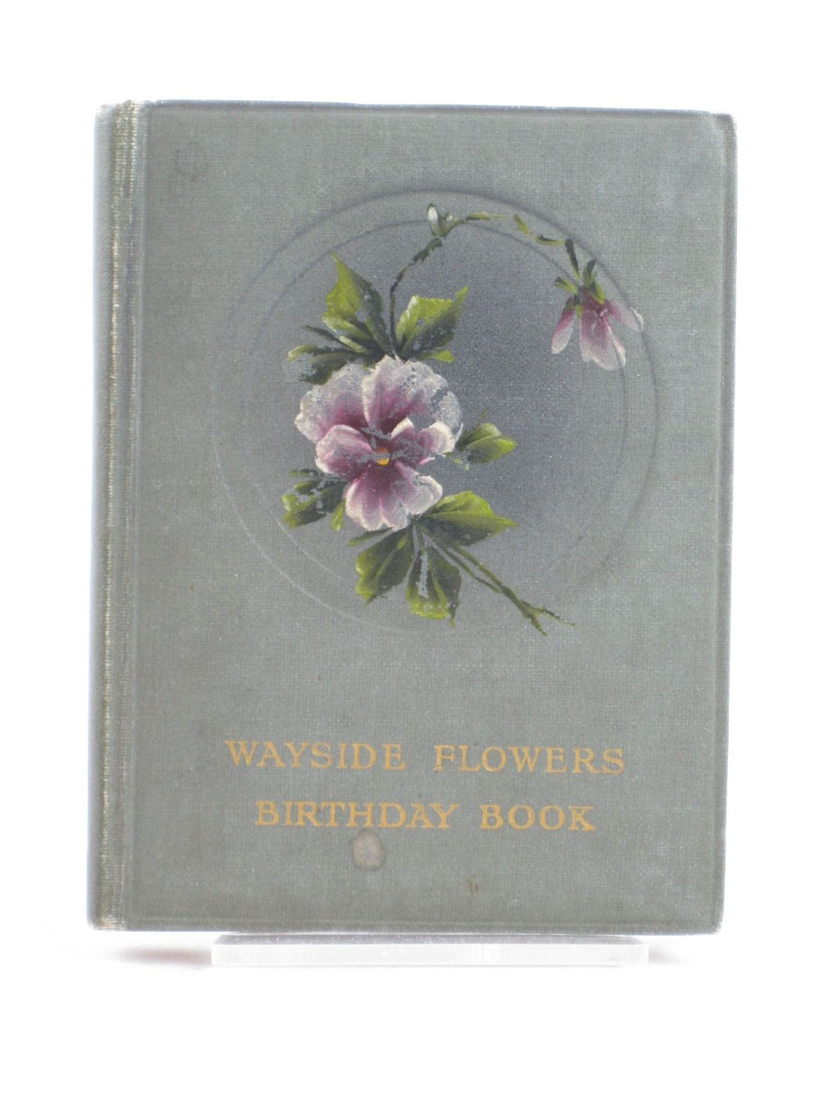Photo of WAYSIDE FLOWERS BIRTHDAY BOOK published by E. Nister (STOCK CODE: 1501917)  for sale by Stella & Rose's Books