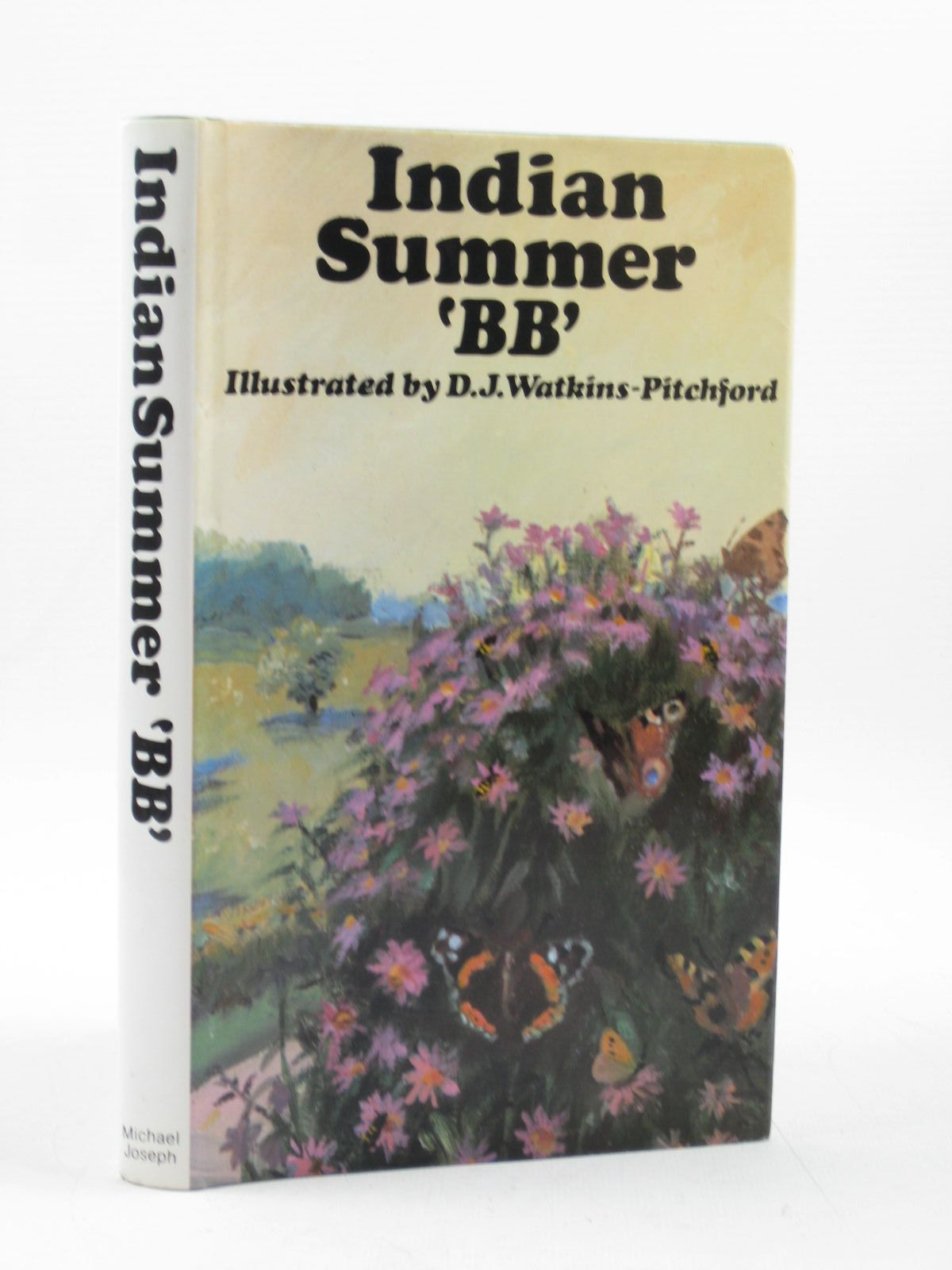 Photo of INDIAN SUMMER- Stock Number: 1503102