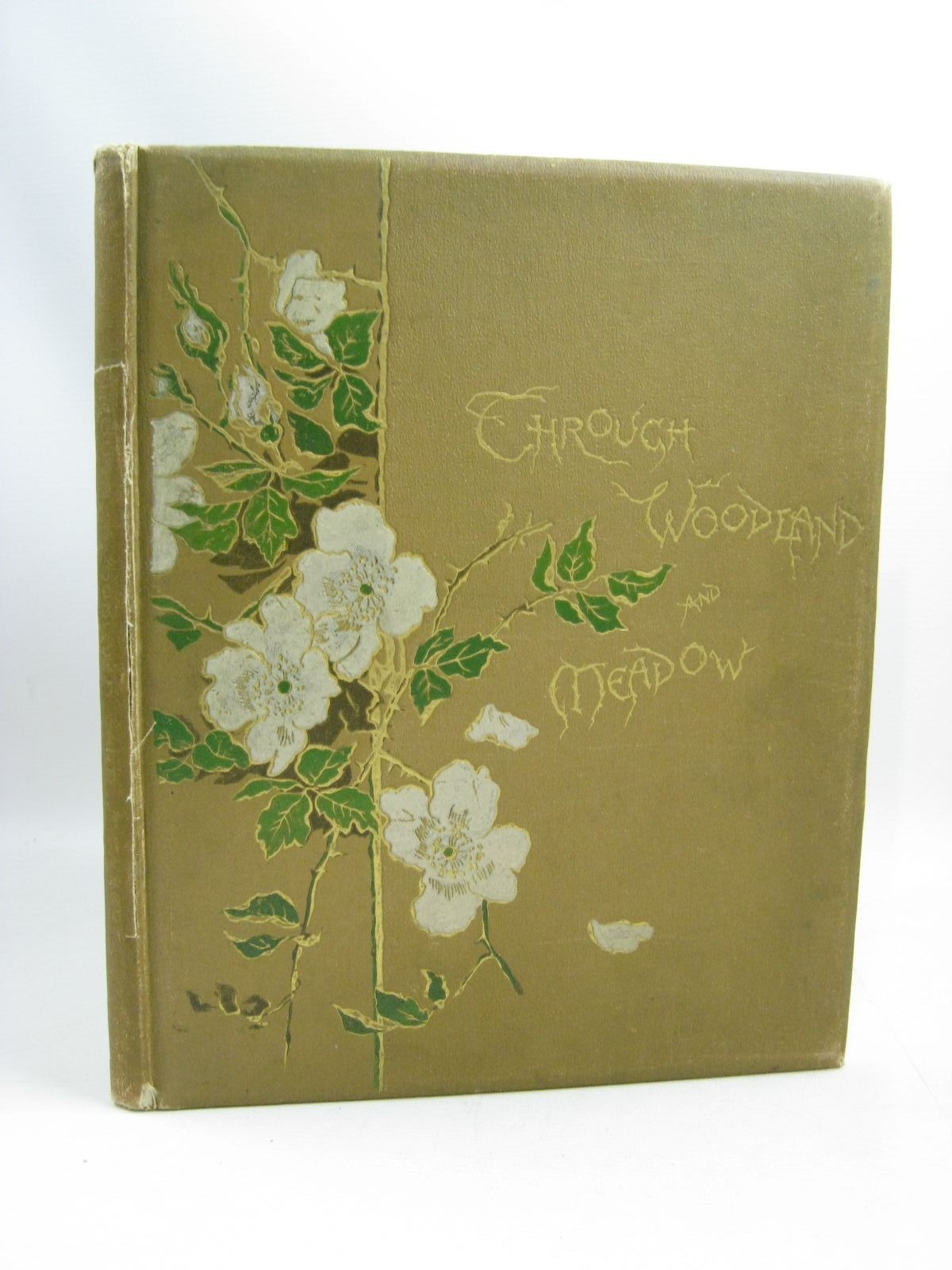 Photo of THROUGH WOODLAND AND MEADOW & OTHER POEMS written by Wood, Helen J.<br />Nesbit, E.<br />Bingham, Clifton illustrated by Low, Marie<br />West, Maud published by Ernest Nister, E.P. Dutton & Co. (STOCK CODE: 1505415)  for sale by Stella & Rose's Books