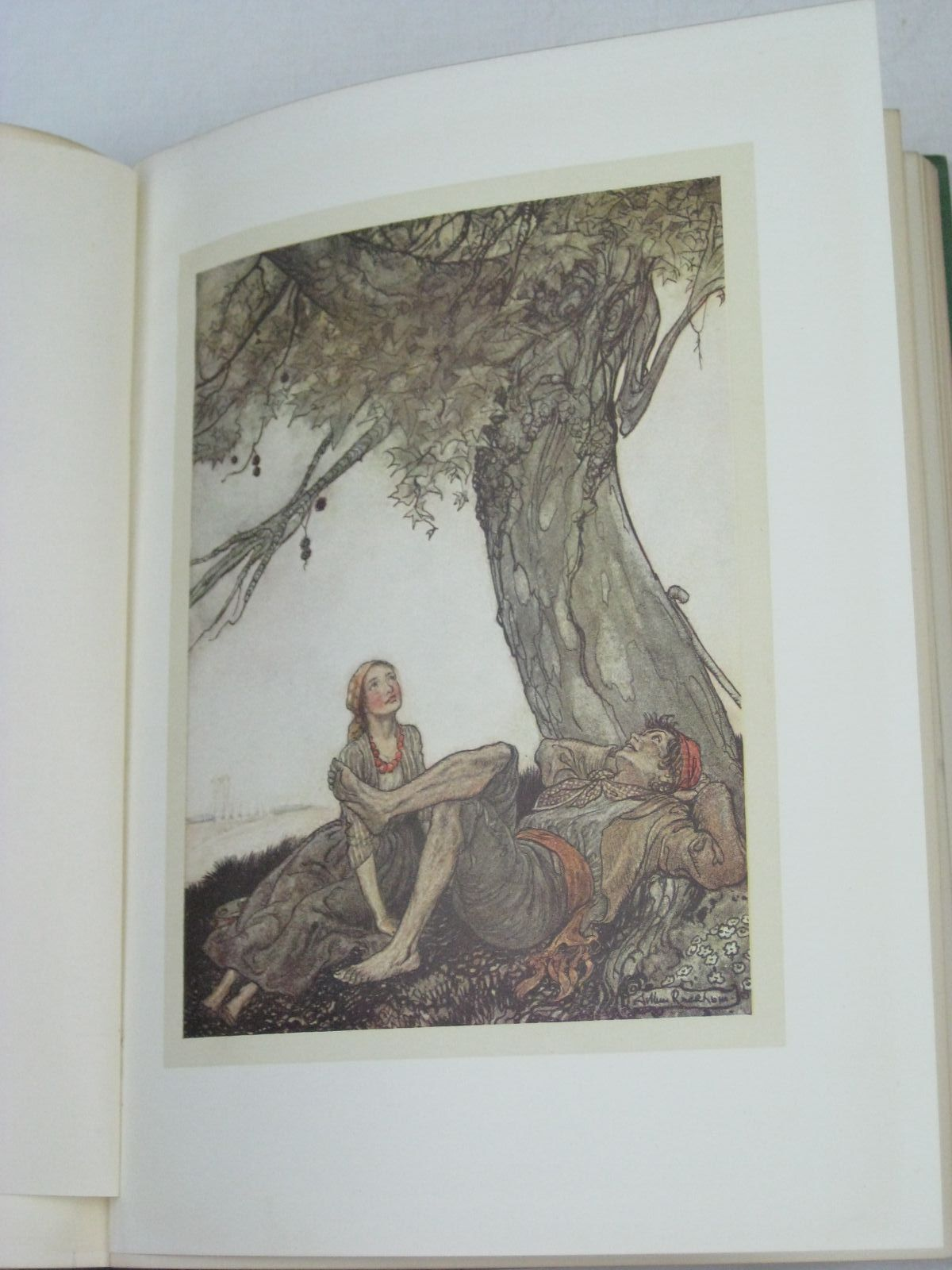 Photo of AESOP'S FABLES written by Aesop, <br />Jones, V.S. Vernon illustrated by Rackham, Arthur published by William Heinemann (STOCK CODE: 1505738)  for sale by Stella & Rose's Books