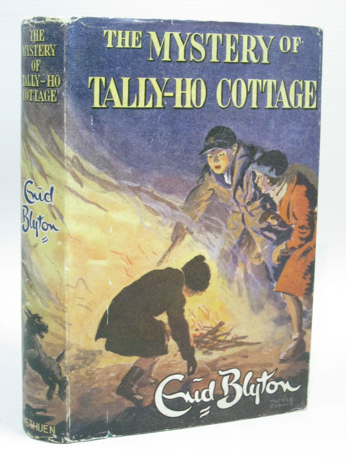 Photo of THE MYSTERY OF TALLY-HO COTTAGE written by Blyton, Enid illustrated by Evans, Treyer published by Methuen & Co. Ltd. (STOCK CODE: 1506312)  for sale by Stella & Rose's Books