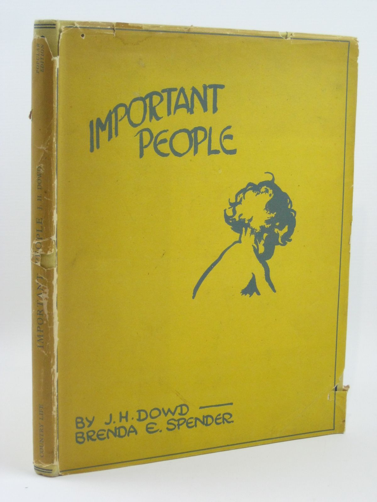 Photo of IMPORTANT PEOPLE written by Spender, Brenda E. illustrated by Dowd, J.H. published by Country Life Limited (STOCK CODE: 1506572)  for sale by Stella & Rose's Books