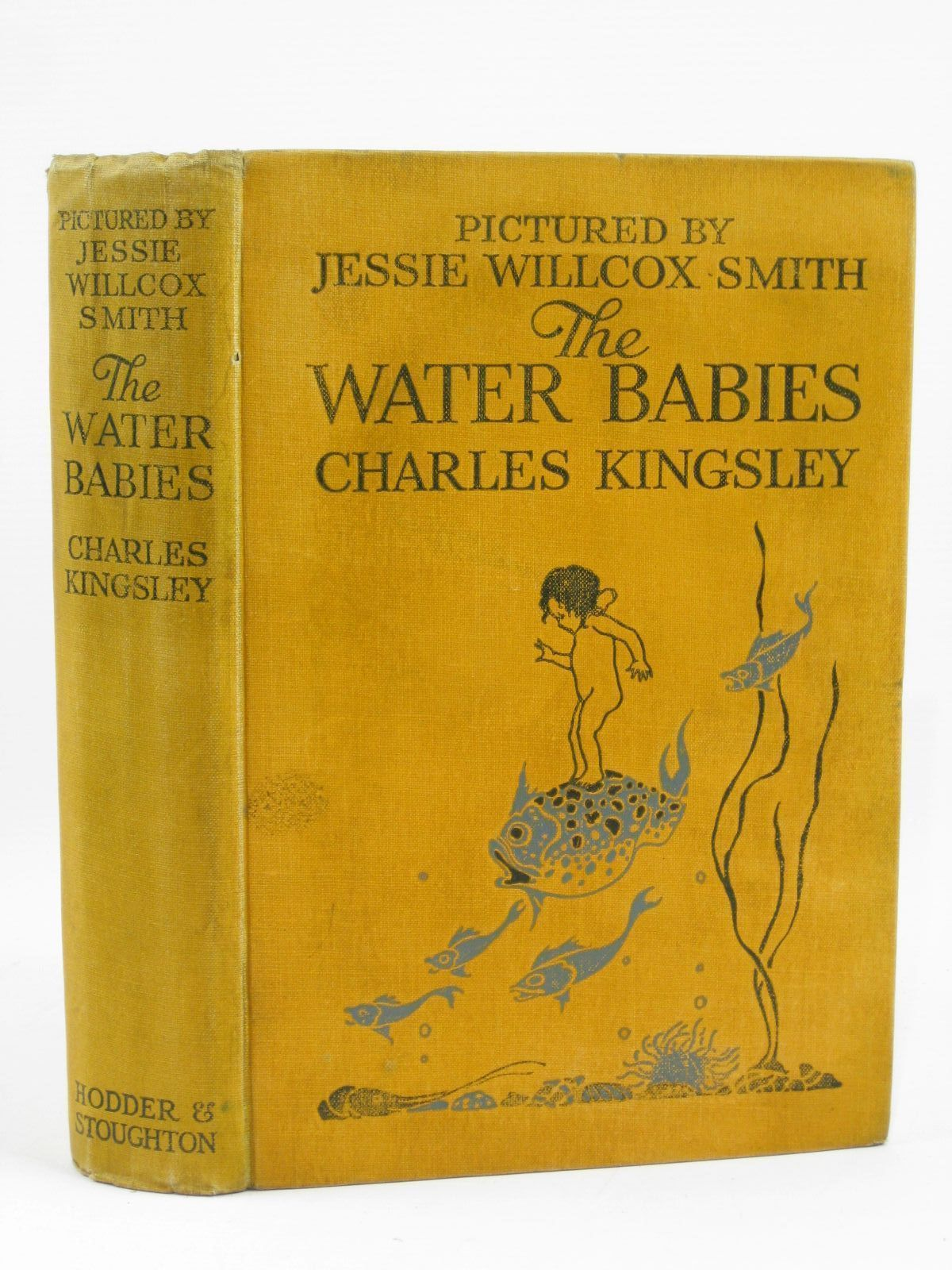 Photo of THE WATER BABIES written by Kingsley, Charles illustrated by Smith, Jessie Willcox published by Hodder & Stoughton (STOCK CODE: 1506923)  for sale by Stella & Rose's Books