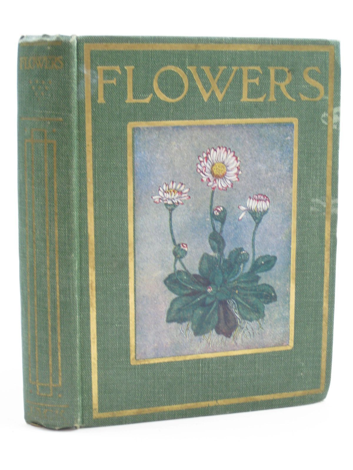 Photo of FLOWERS SHOWN TO THE CHILDREN written by Smith, C.E. illustrated by Kelman, Janet Harvey published by T.C. & E.C. Jack (STOCK CODE: 1507396)  for sale by Stella & Rose's Books