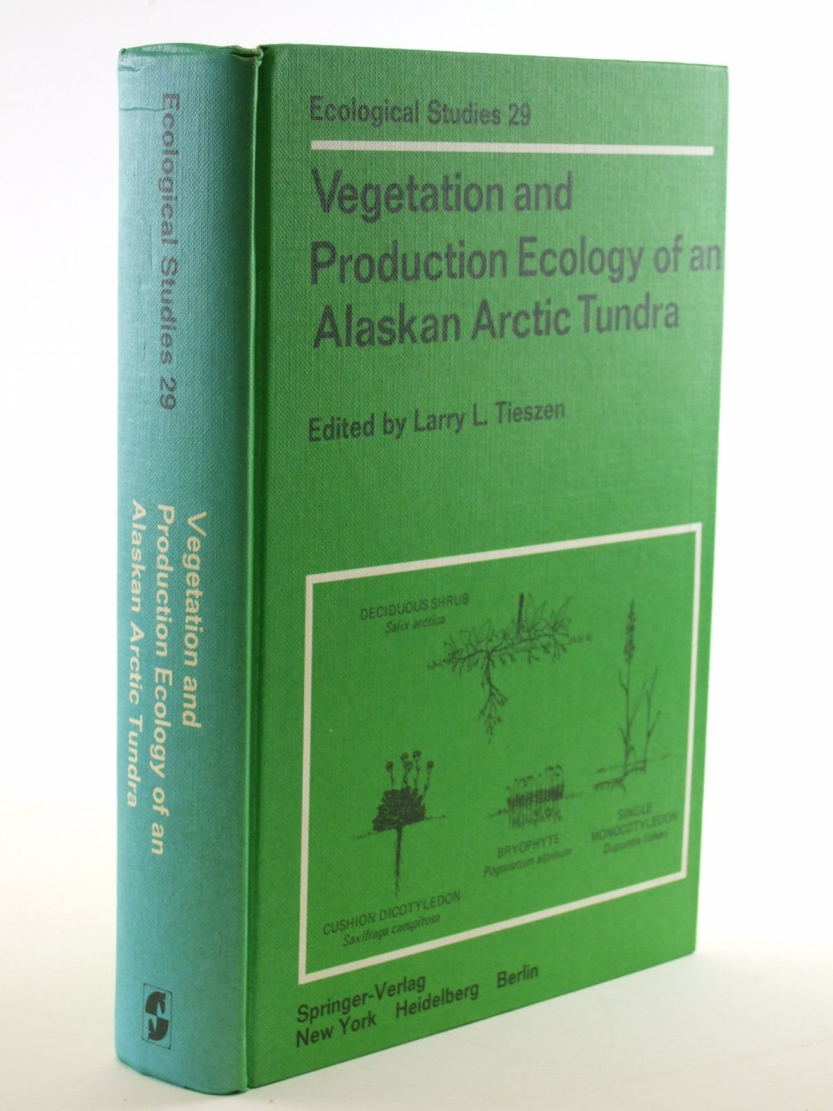 Photo of VEGETATION AND PRODUCTION ECOLOGY OF AN ALASKAN ARCTIC TUNDRA written by Tieszen, Larry L. published by Springer-Verlag (STOCK CODE: 1602938)  for sale by Stella & Rose's Books