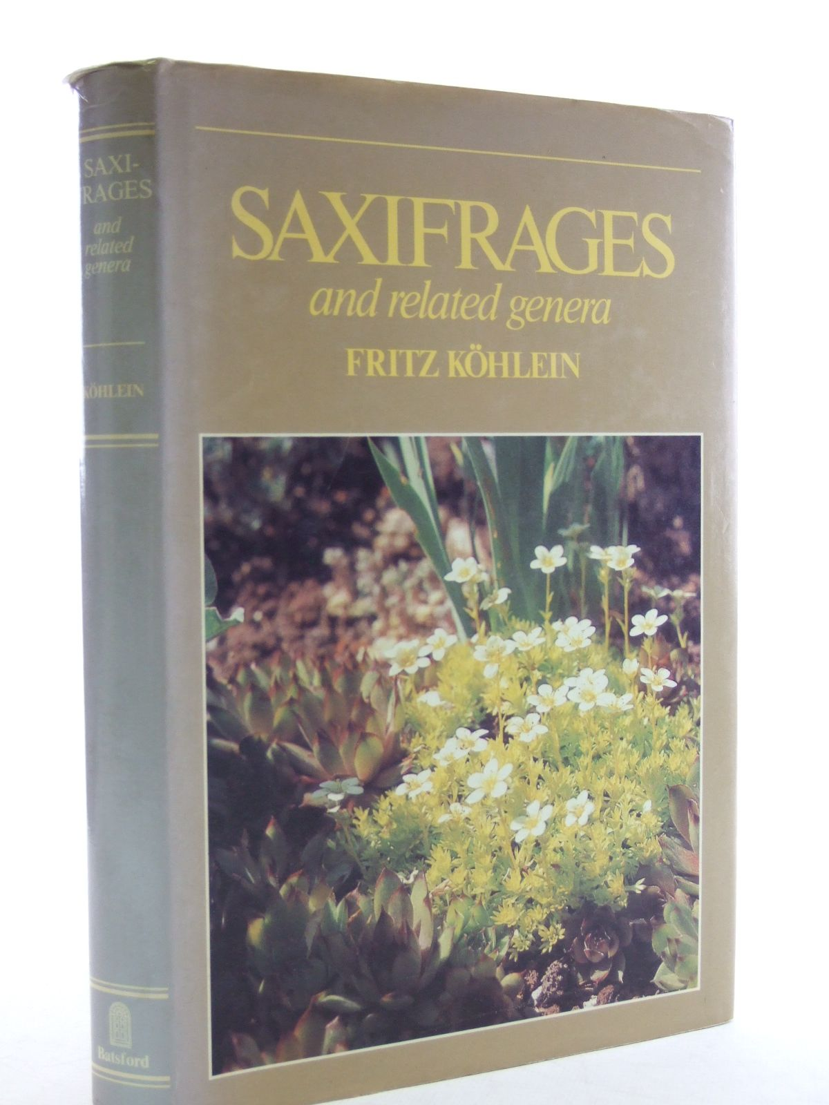 Photo of SAXIFRAGES AND RELATED GENERA written by Kohlein, Fritz published by B.T. Batsford Ltd. (STOCK CODE: 1603925)  for sale by Stella & Rose's Books