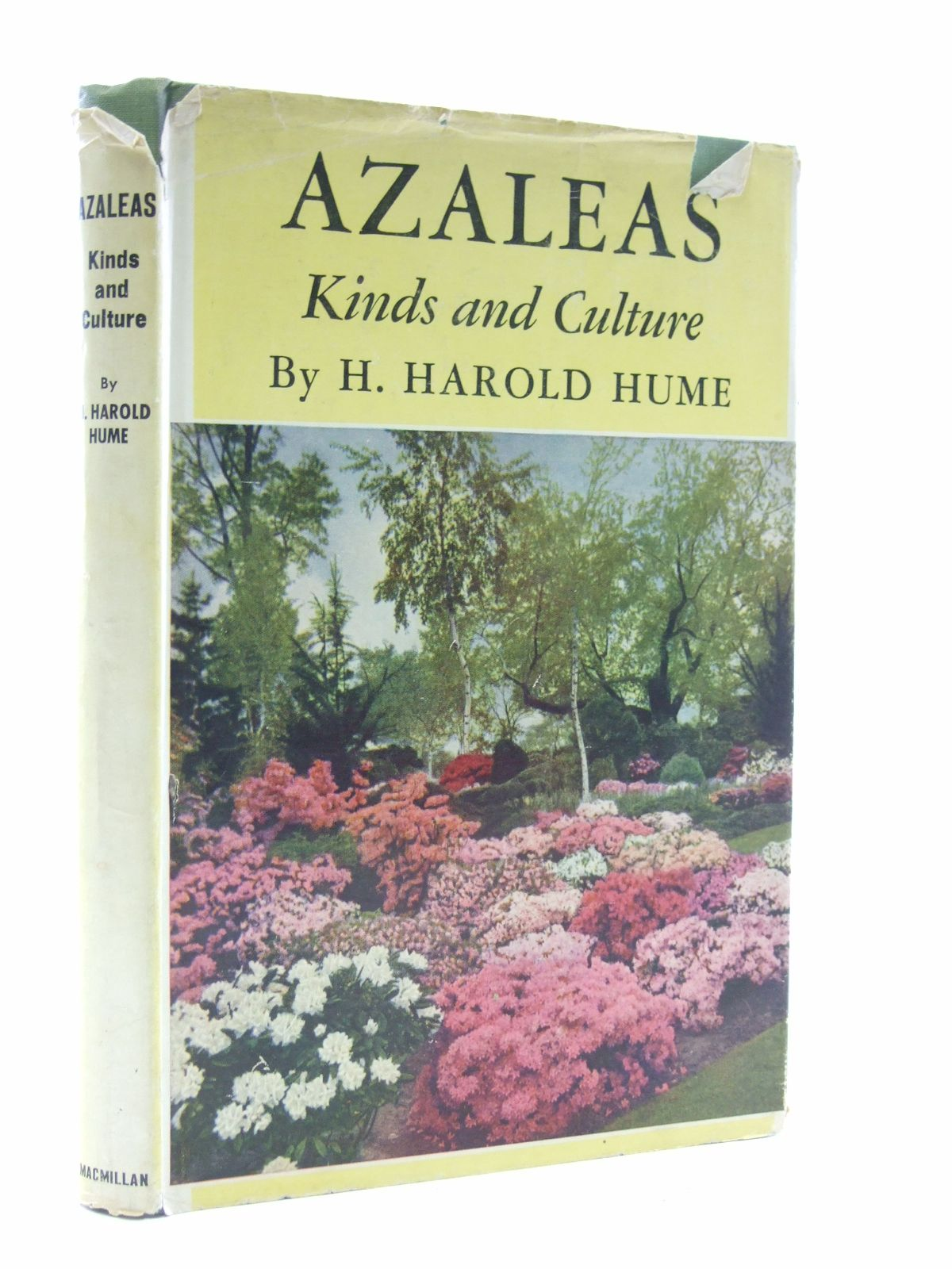 Photo of AZALEAS KINDS AND CULTURES written by Hume, H. Harold published by The Macmillan Company (STOCK CODE: 1603929)  for sale by Stella & Rose's Books