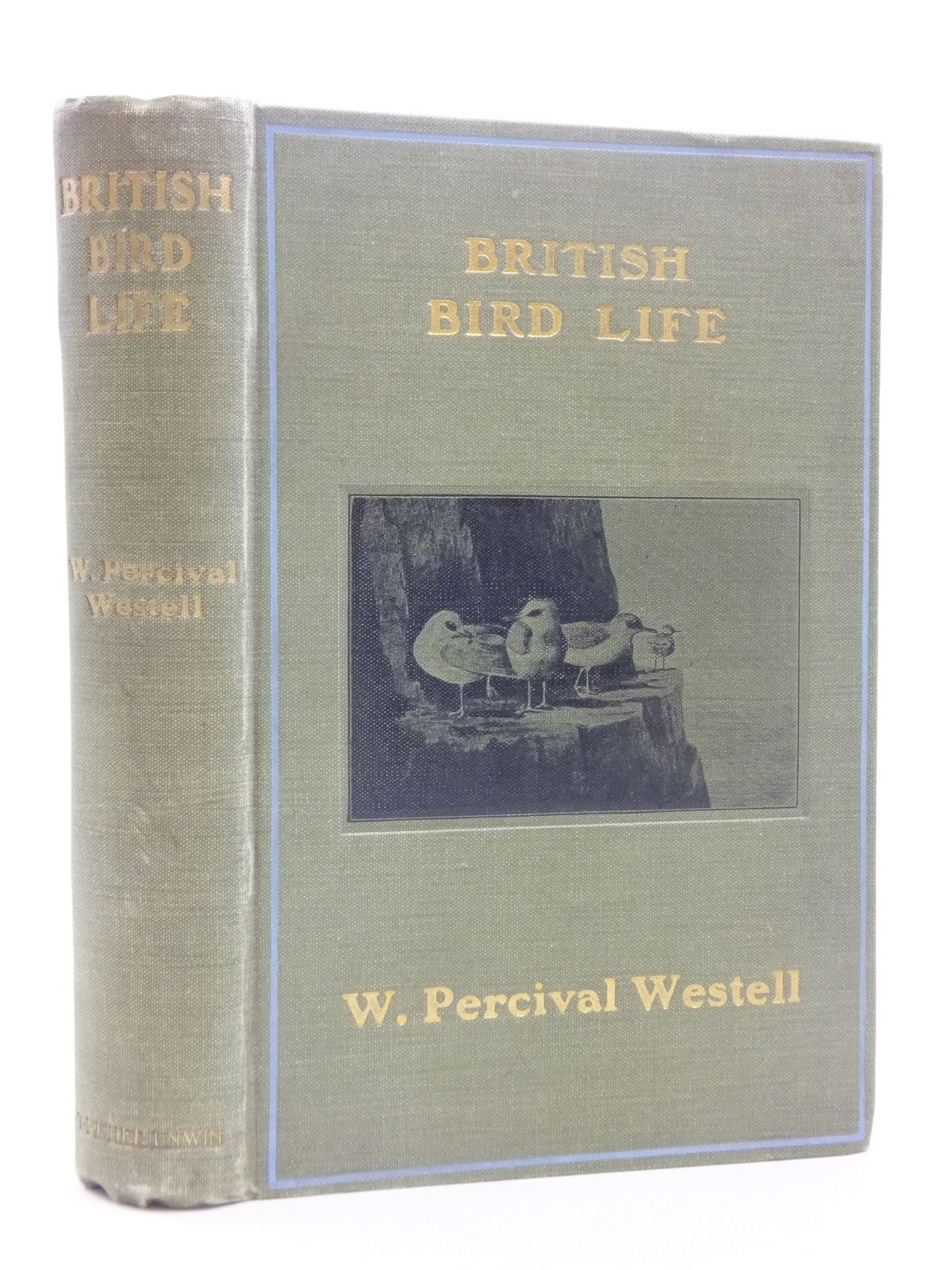 Photo of BRITISH BIRD LIFE written by Westell, W. Percival published by T. Fisher Unwin (STOCK CODE: 1605287)  for sale by Stella & Rose's Books