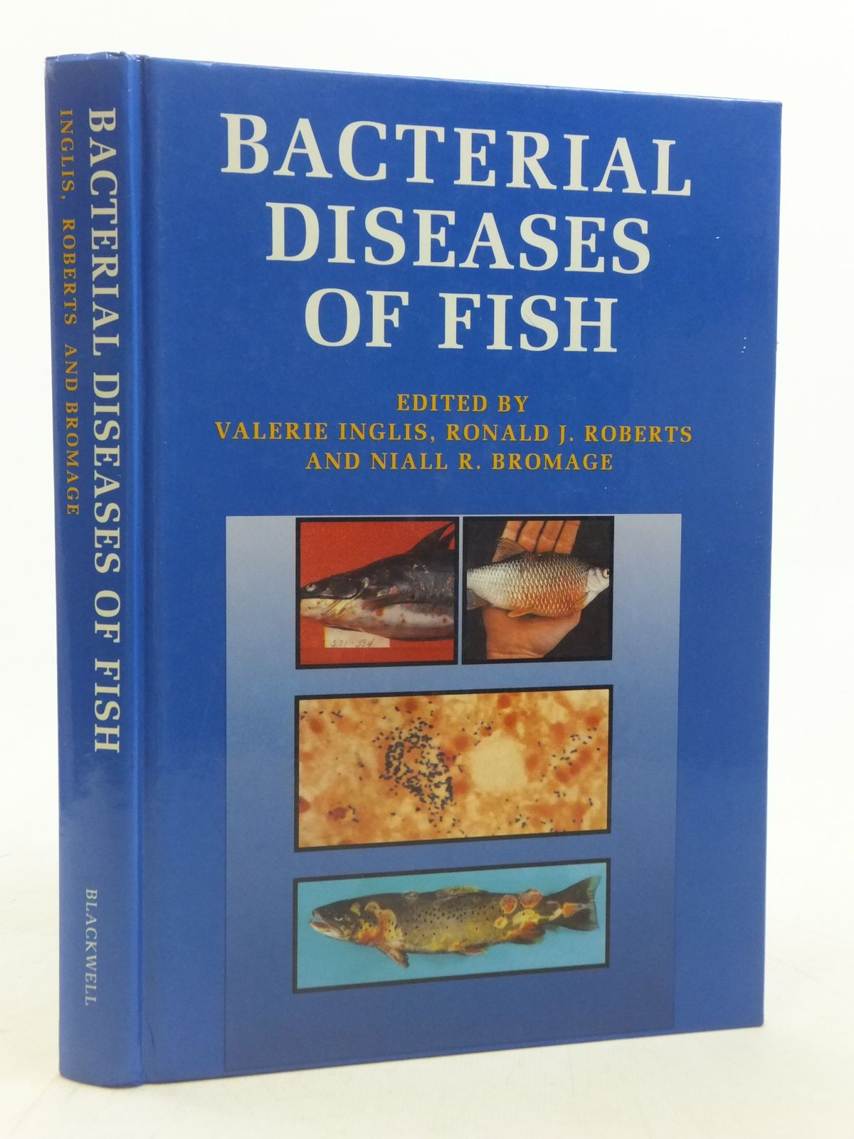 Photo of BACTERIAL DISEASES OF FISH written by Inglis, Valerie<br />Roberts, Ronald J.<br />Bromage, Niall R. published by Blackwell Scientific Publications (STOCK CODE: 1606070)  for sale by Stella & Rose's Books