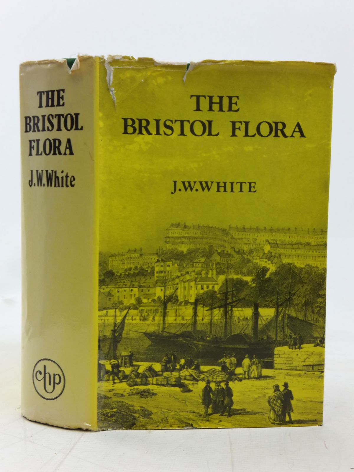 Photo of THE FLORA OF BRISTOL written by White, James Walter published by Chatford House Press Ltd. (STOCK CODE: 1606462)  for sale by Stella & Rose's Books