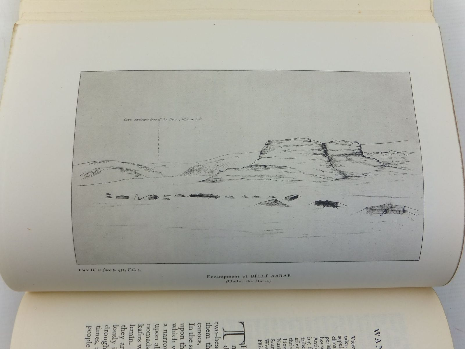 Photo of TRAVELS IN ARABIA DESERTA written by Doughty, Charles M.<br />Lawrence, T.E. published by Jonathan Cape (STOCK CODE: 1606872)  for sale by Stella & Rose's Books