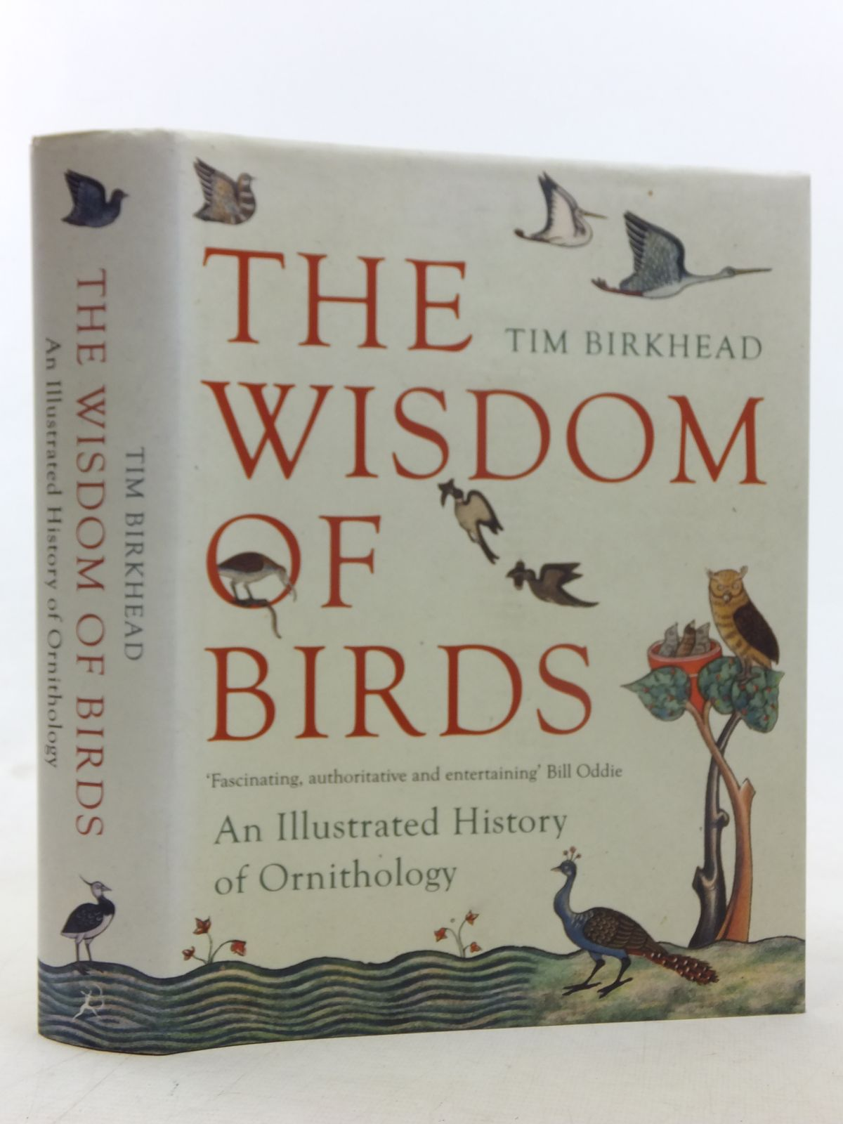 Photo of THE WISDOM OF BIRDS written by Birkhead, Tim published by Bloomsbury (STOCK CODE: 1607235)  for sale by Stella & Rose's Books