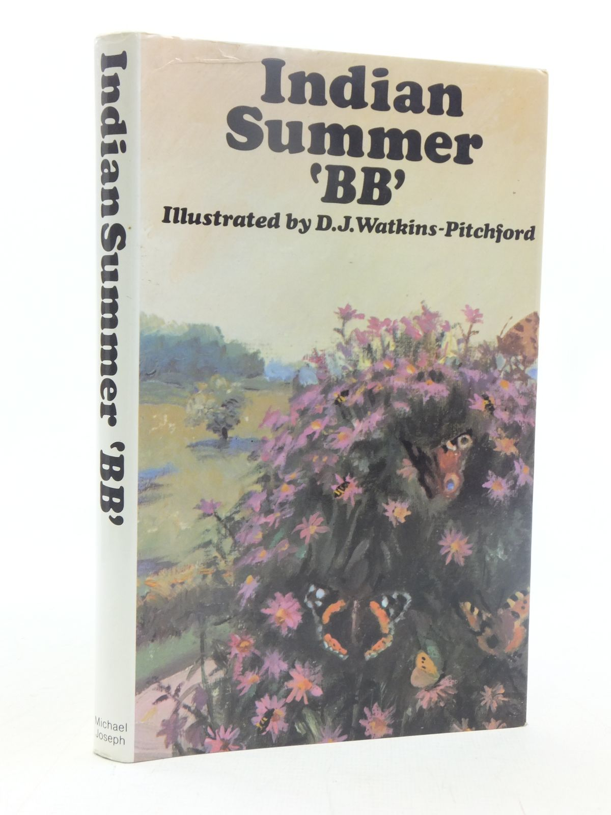 Photo of INDIAN SUMMER- Stock Number: 1607324