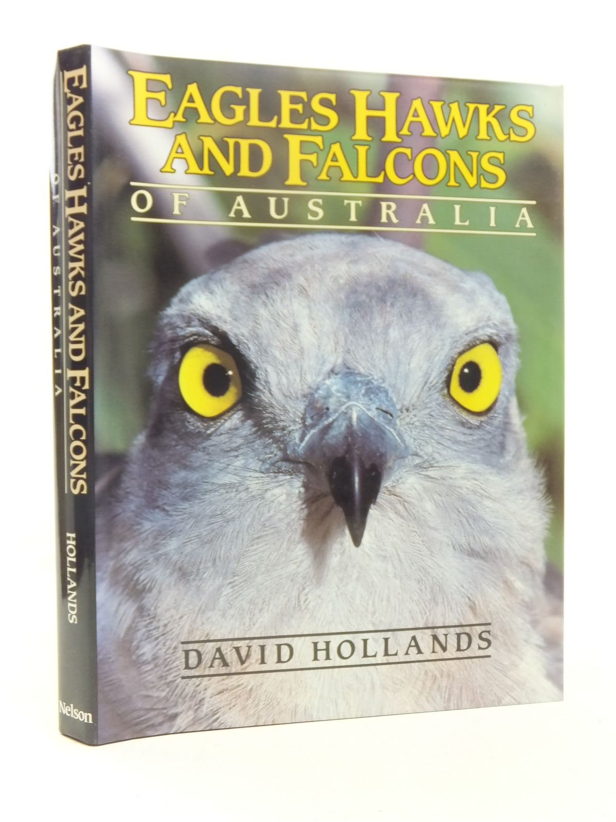 Photo of EAGLES, HAWKS AND FALCONS OF AUSTRALIA written by Hollands, David published by Nelson (STOCK CODE: 1607370)  for sale by Stella & Rose's Books