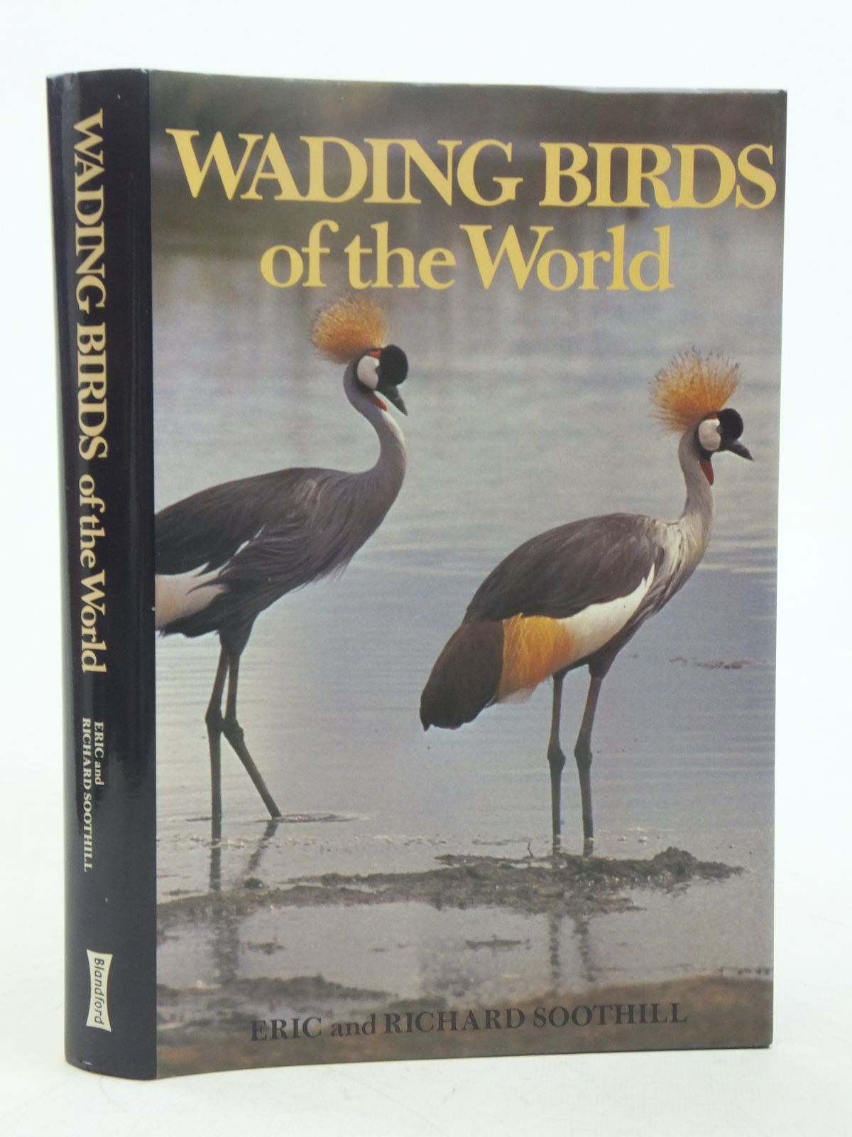 Photo of WADING BIRDS OF THE WORLD written by Soothill, Eric<br />Soothill, Richard published by Blandford Press (STOCK CODE: 1607442)  for sale by Stella & Rose's Books