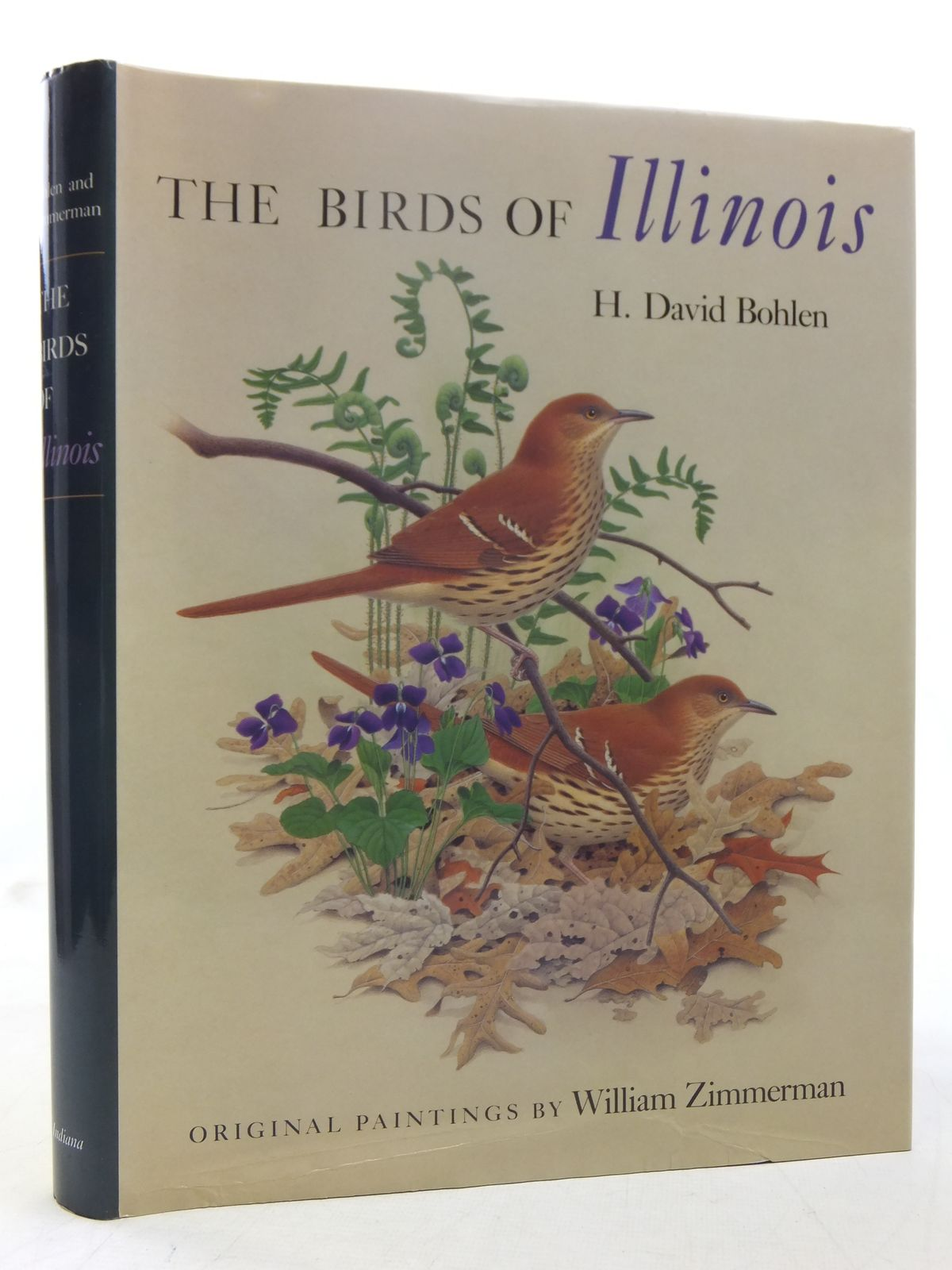 Photo of THE BIRDS OF ILLINOIS written by Bohlen, H. David illustrated by Zimmerman, William published by Indiana University Press (STOCK CODE: 1607486)  for sale by Stella & Rose's Books