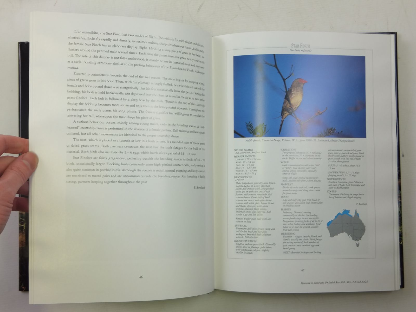 Photo of FINCHES, BOWERBIRDS & OTHER PASSERINES OF AUSTRALIA written by Strahan, Ronald published by Angus & Robertson (STOCK CODE: 1607505)  for sale by Stella & Rose's Books