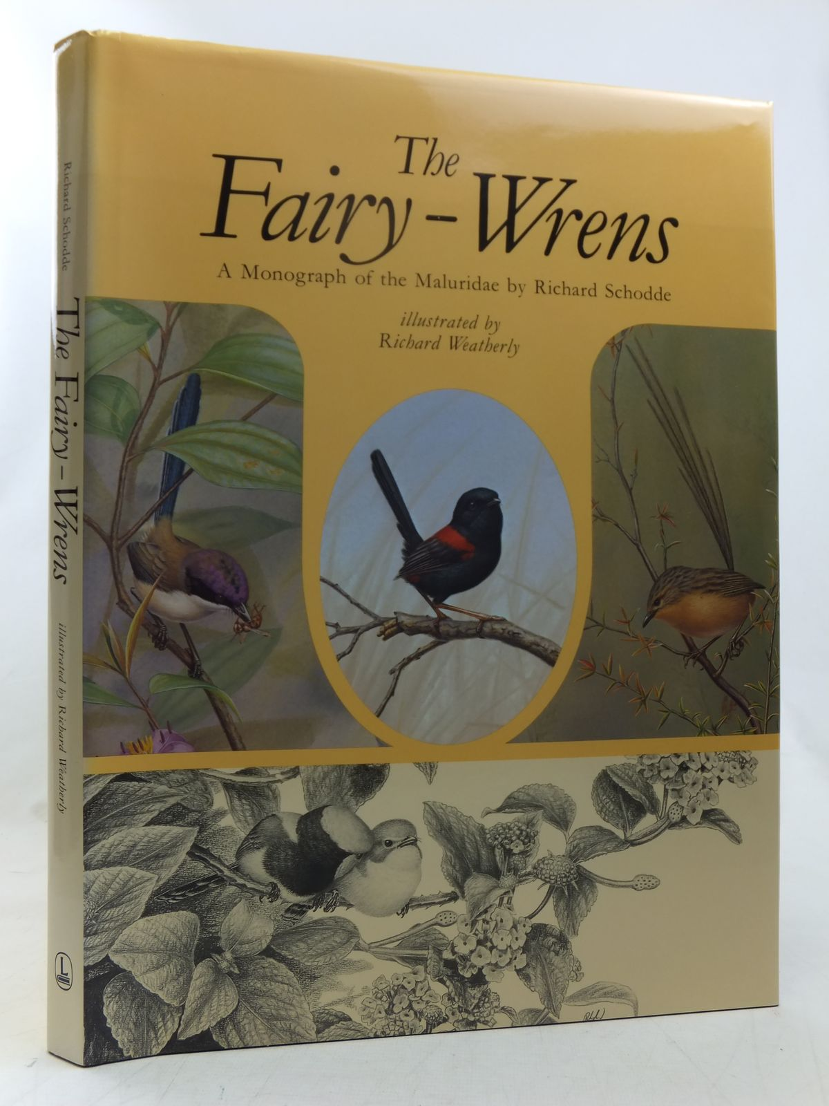 Photo of THE FAIRY-WRENS written by Schodde, Richard illustrated by Weatherly, Richard published by Lansdowne Editions (STOCK CODE: 1607519)  for sale by Stella & Rose's Books