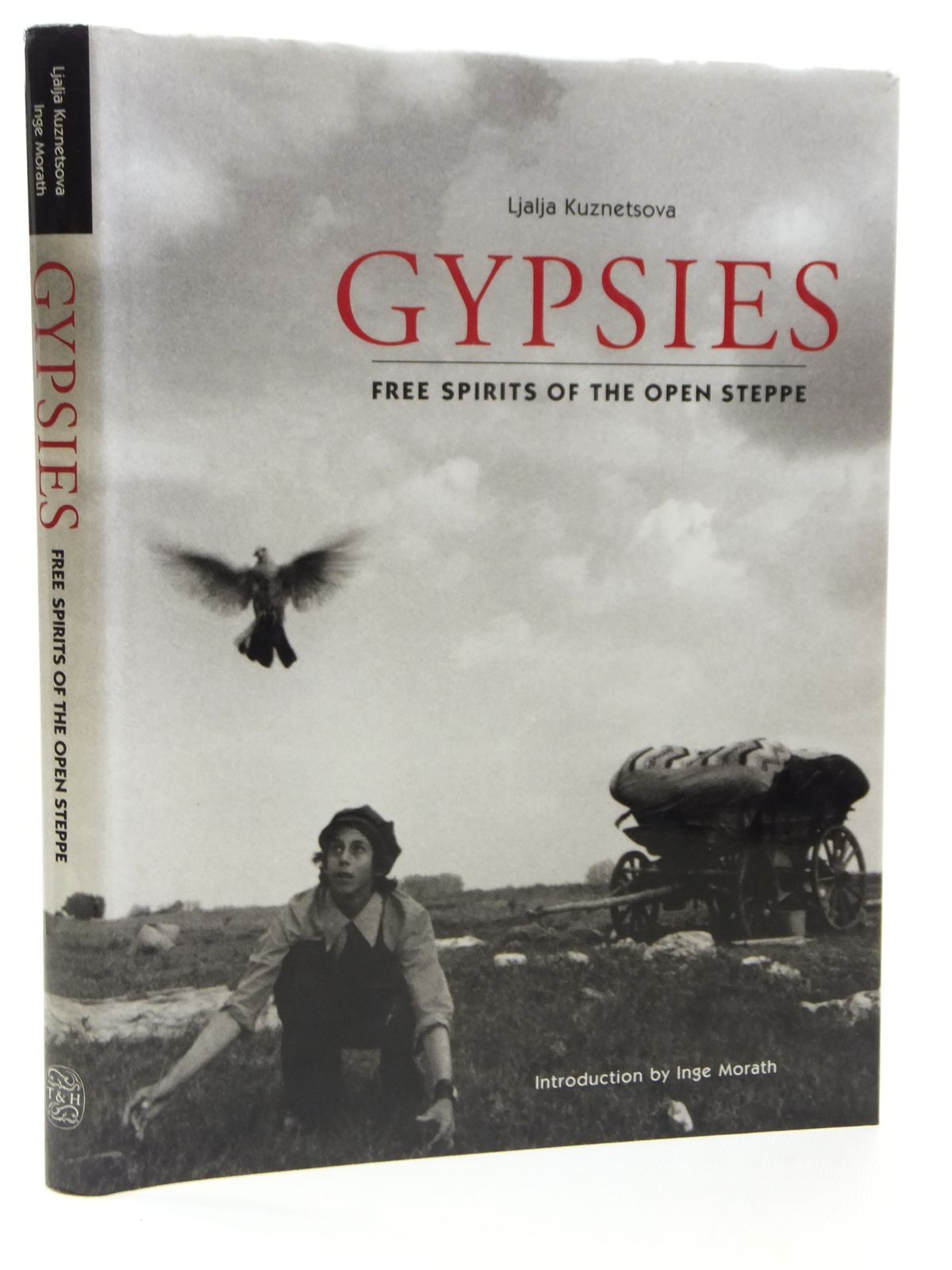 Photo of GYPSIES FREE SPIRITS OF THE OPEN STEPPE written by Kuznetsova, Ljalja published by Thames and Hudson (STOCK CODE: 1608190)  for sale by Stella & Rose's Books