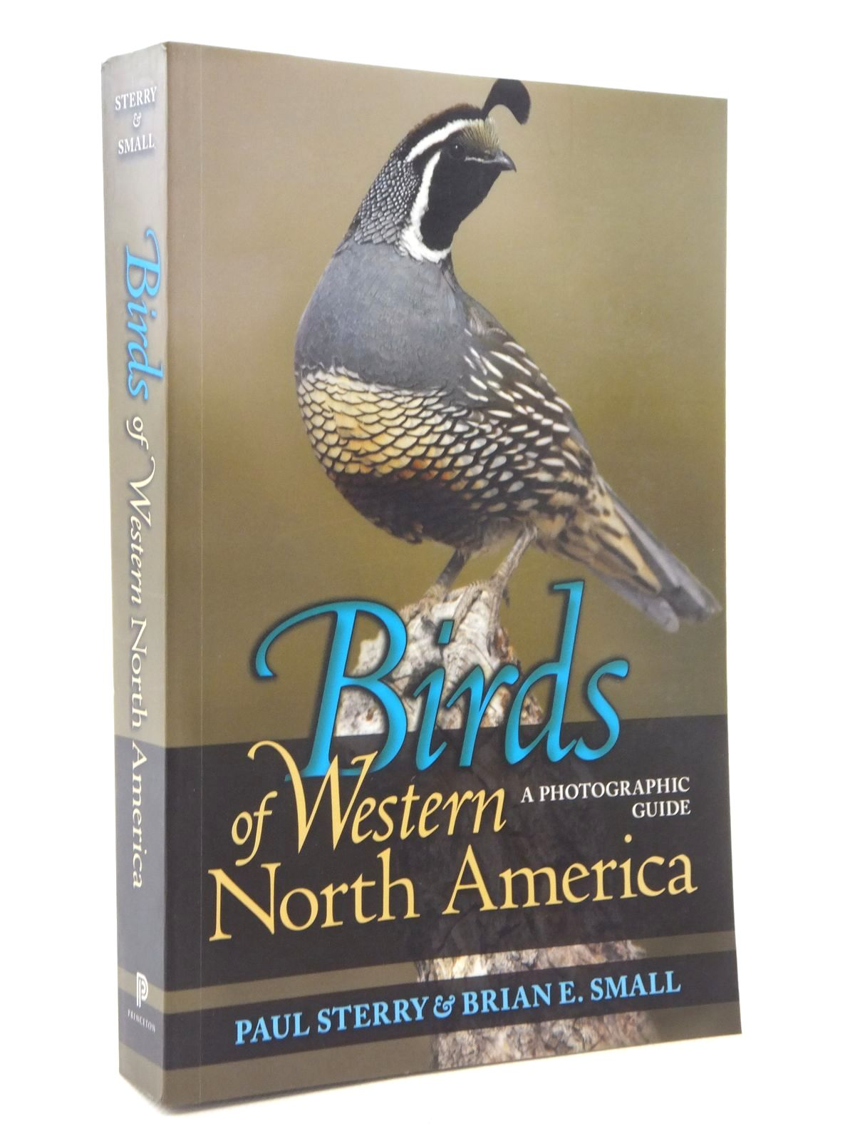Photo of BIRDS OF WESTERN NORTH AMERICA written by Sterry, Paul<br />Small, Brian E. published by Princeton University Press (STOCK CODE: 1609770)  for sale by Stella & Rose's Books